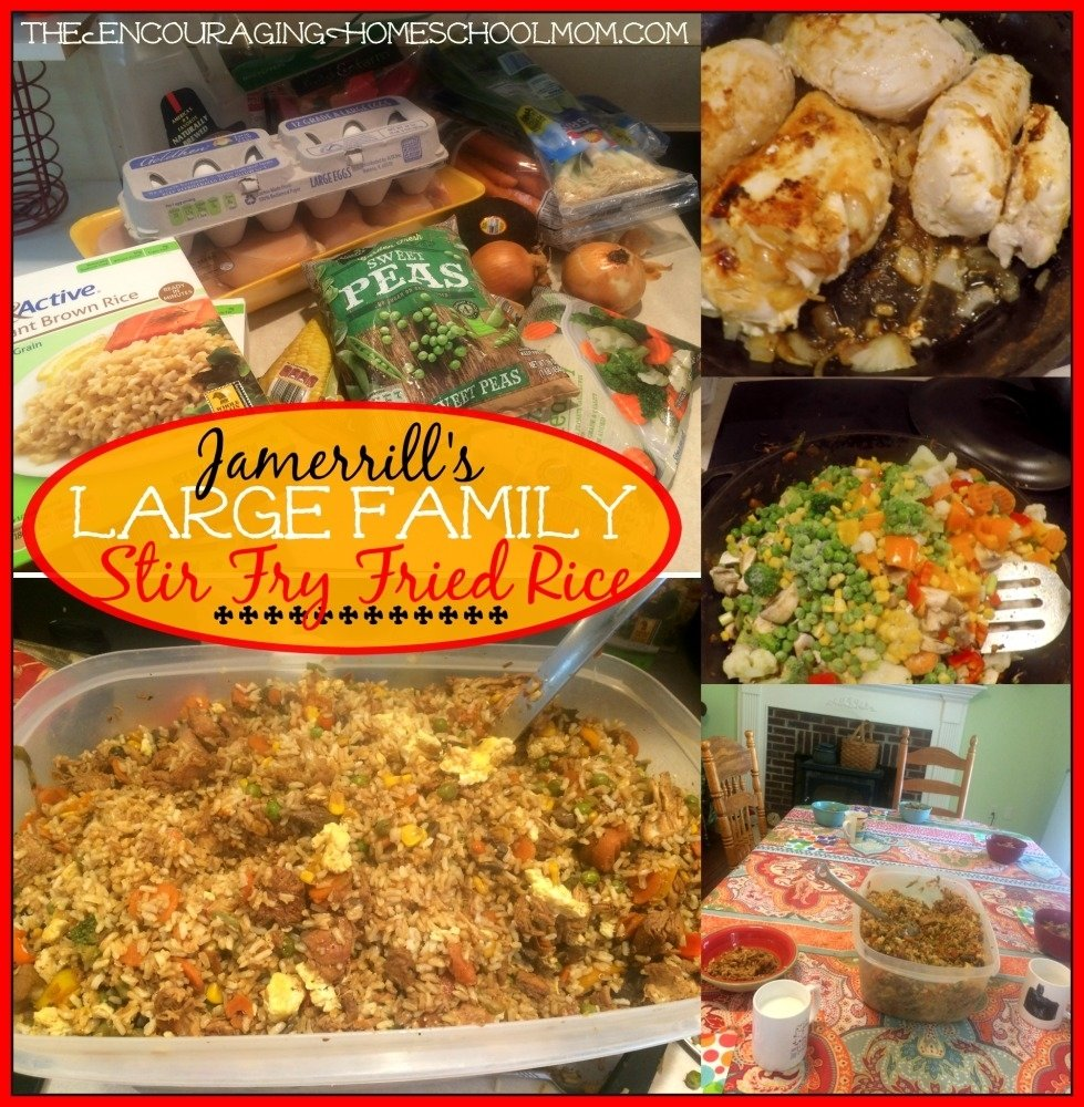 10 Amazing Dinner Ideas For Large Families large family meal plan 4 weeks 90 family meals 60 snacks recipes 2 2020