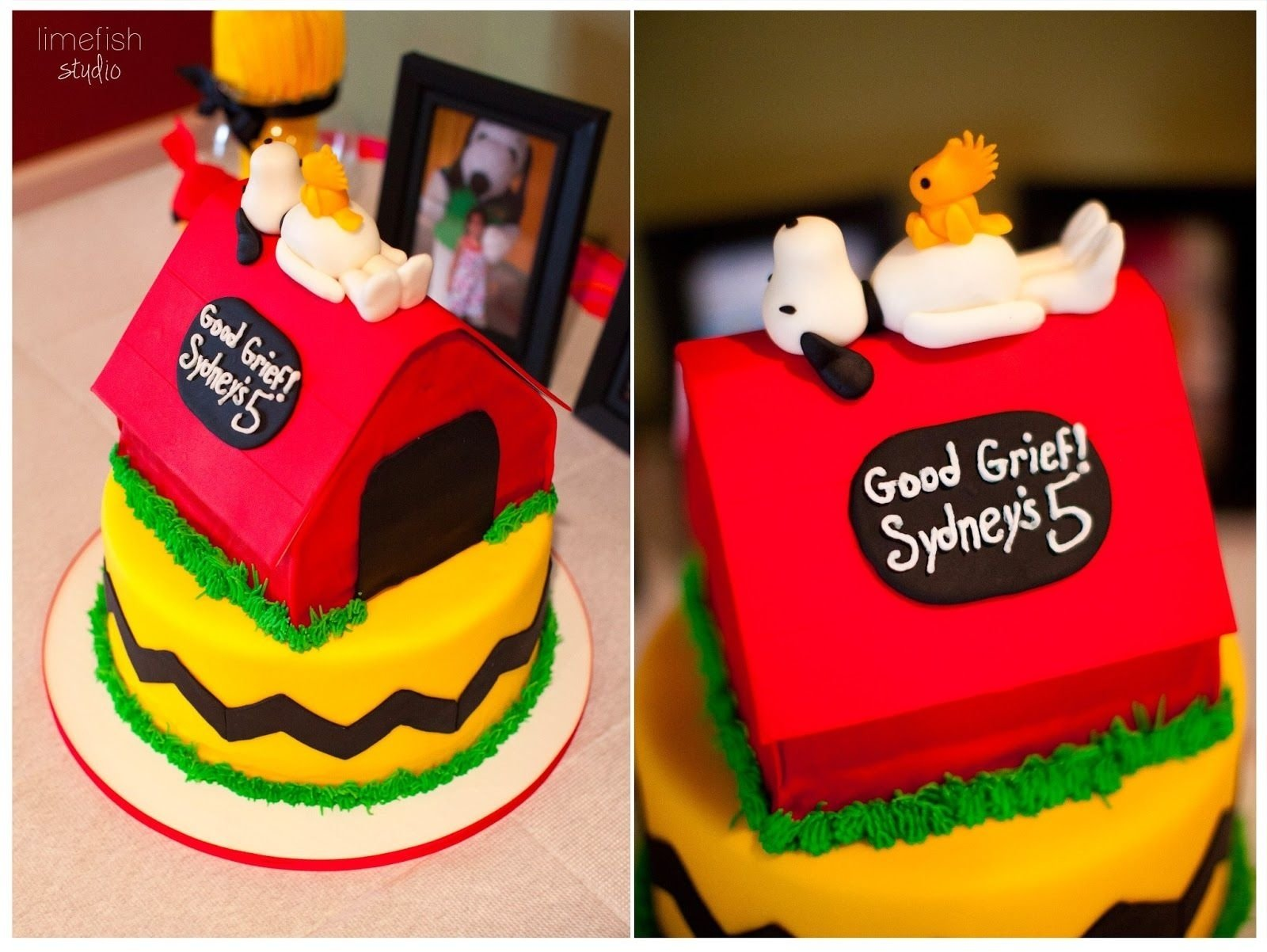 10 Most Popular Birthday Party Ideas Richmond Va limefish studio peanuts birthday party northern virginia 2021