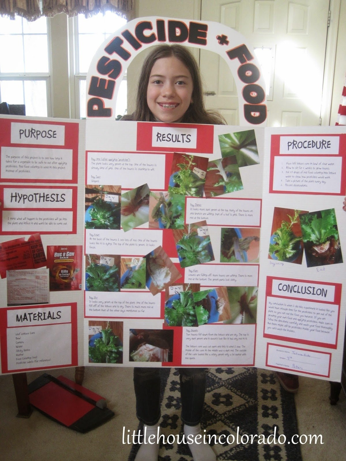 10 Fashionable Science Fair Ideas With Food little house in colorado 4th grade science fair project pesticides 2020