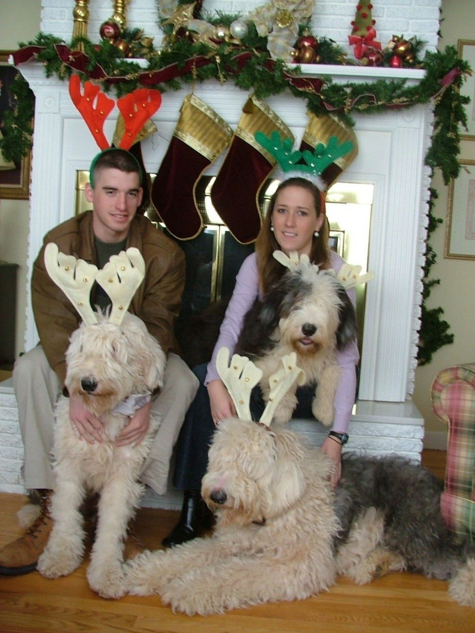 10 Attractive Christmas Card Ideas With Dogs love family christmas card with dogs wearing sweater christmas 2021