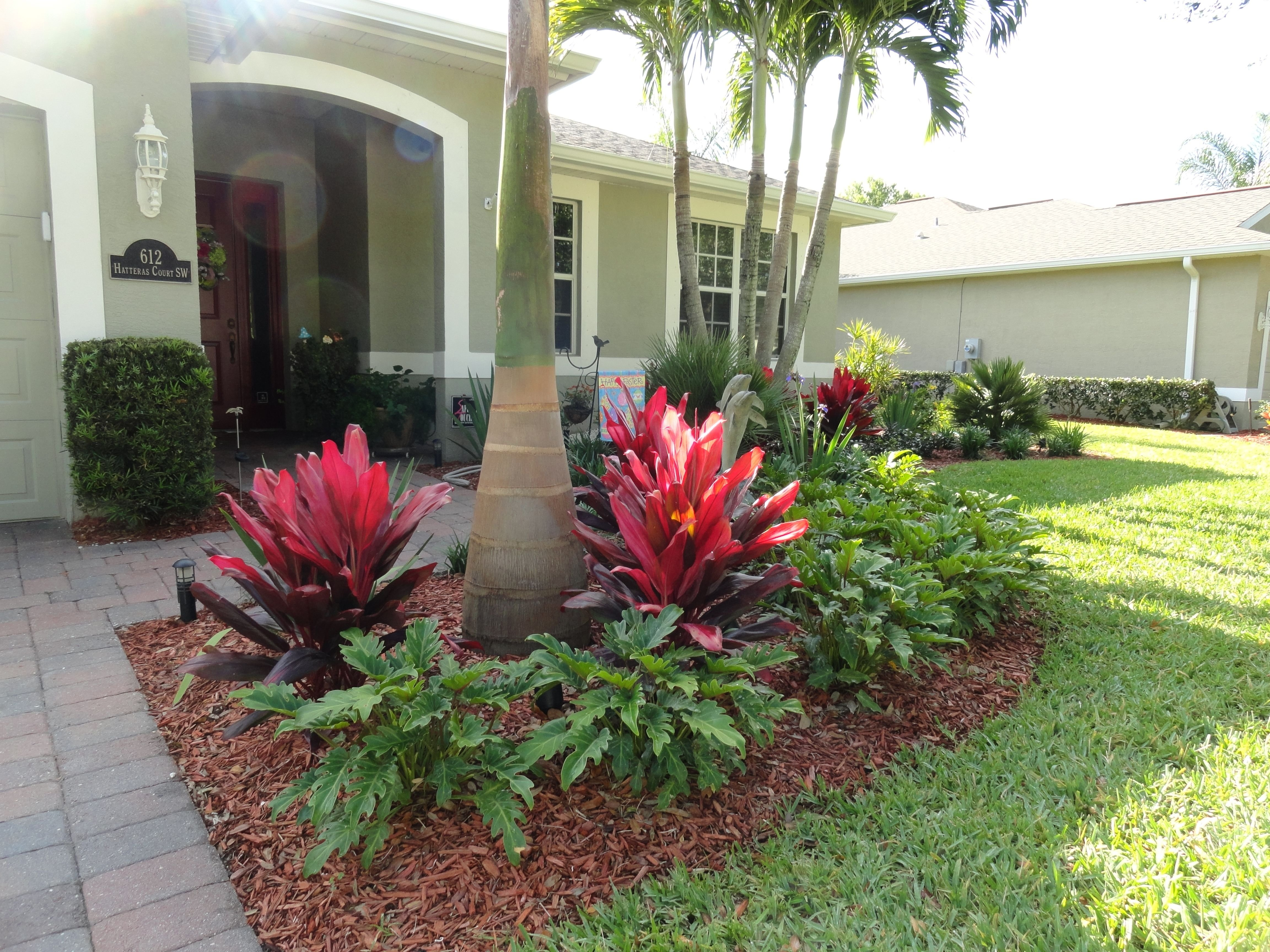 10 Attractive Tropical Landscaping Ideas For Front Yard low maintenance tropical landscaping in vero beach construction 2020