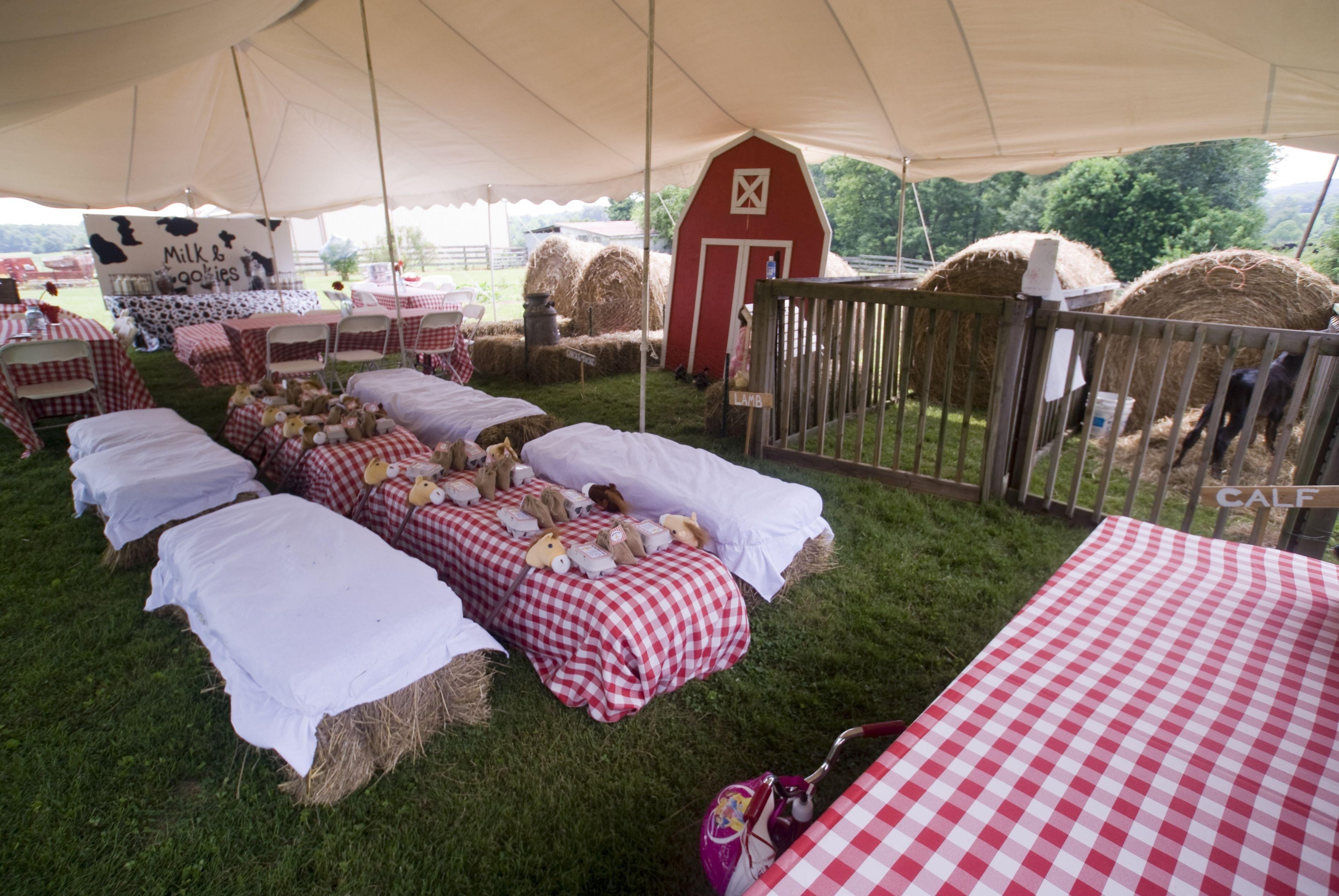 10 Gorgeous Petting Zoo Birthday Party Ideas macys second birthday down on the farm hay bale seating farm 2020