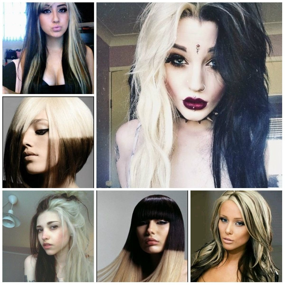 10 Best Blonde And Black Hair Color Ideas marvelous hair color ideas black and blonde half picture of on 1 2020