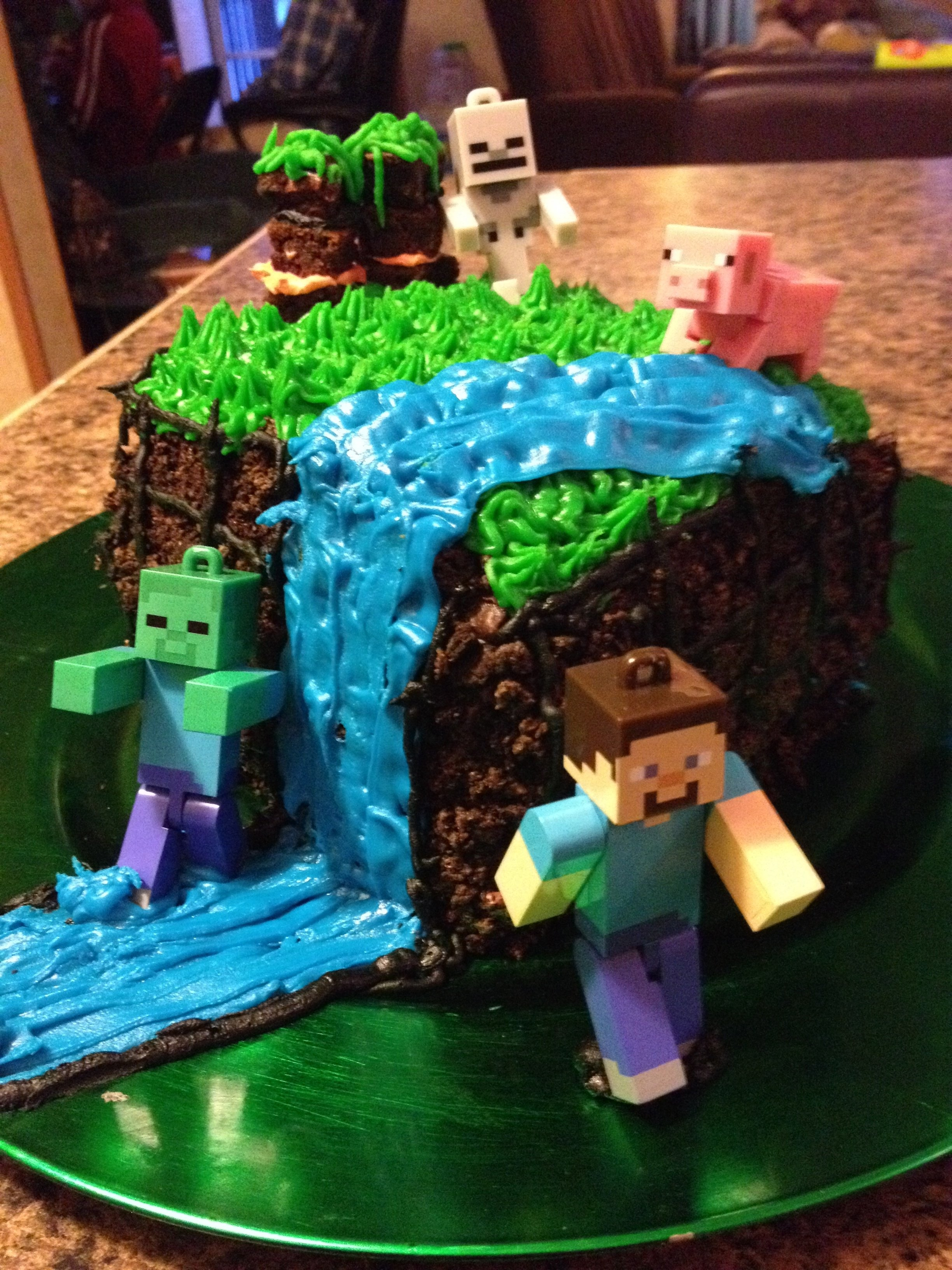 10 Stunning 9 Year Old Boy Birthday Party Ideas Minecraft Cake For My 12 Olds
