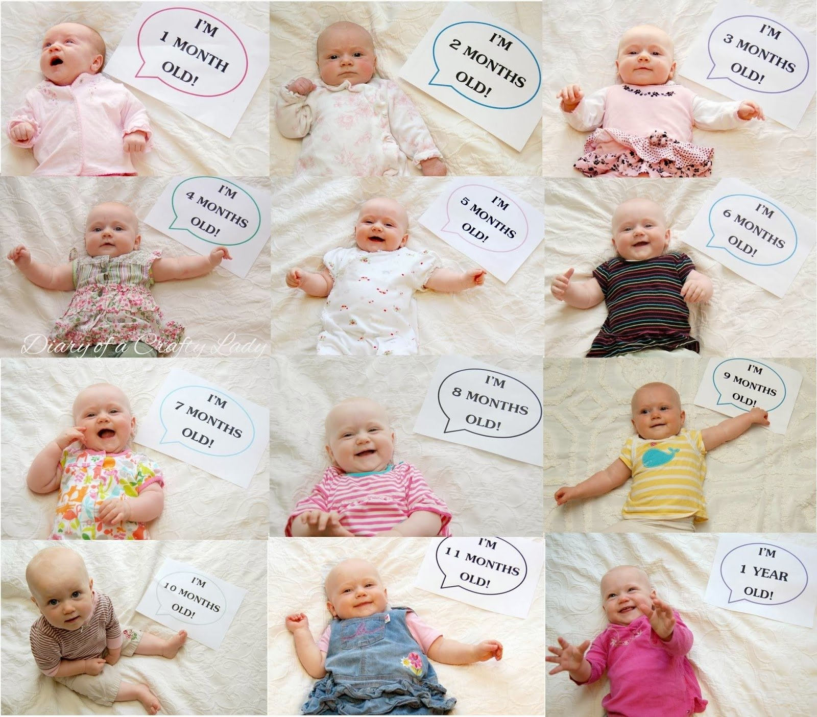 month baby picture ideas more baby photo ideas! | photo op