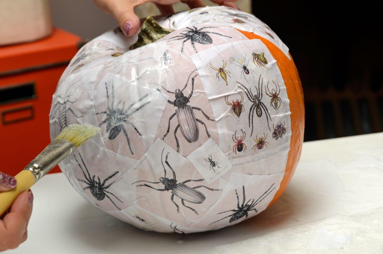 10 Beautiful Pumpkin Decorating Ideas No Carve mr kate diy no carve fall thanksgiving pumpkin decorating 3 2020