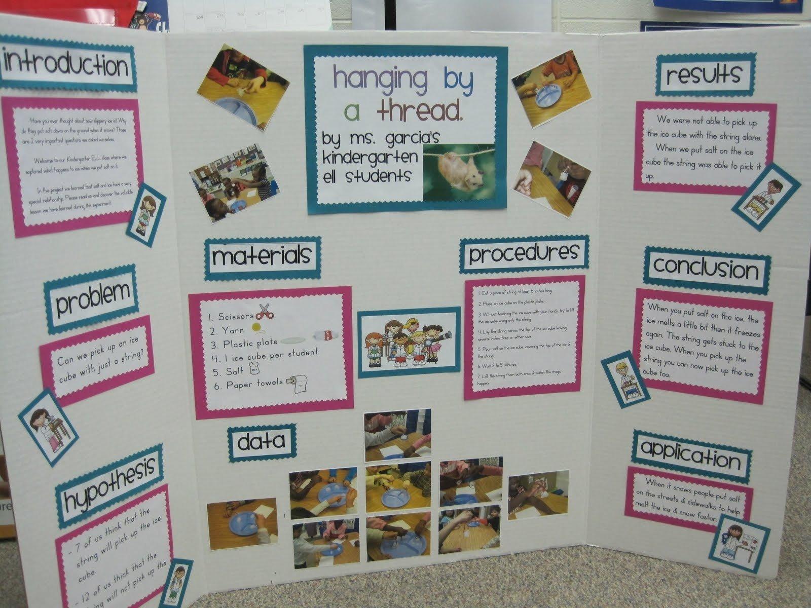 10 Lovable Kindergarten Science Fair Project Ideas ms ms blog science fair projects 2020