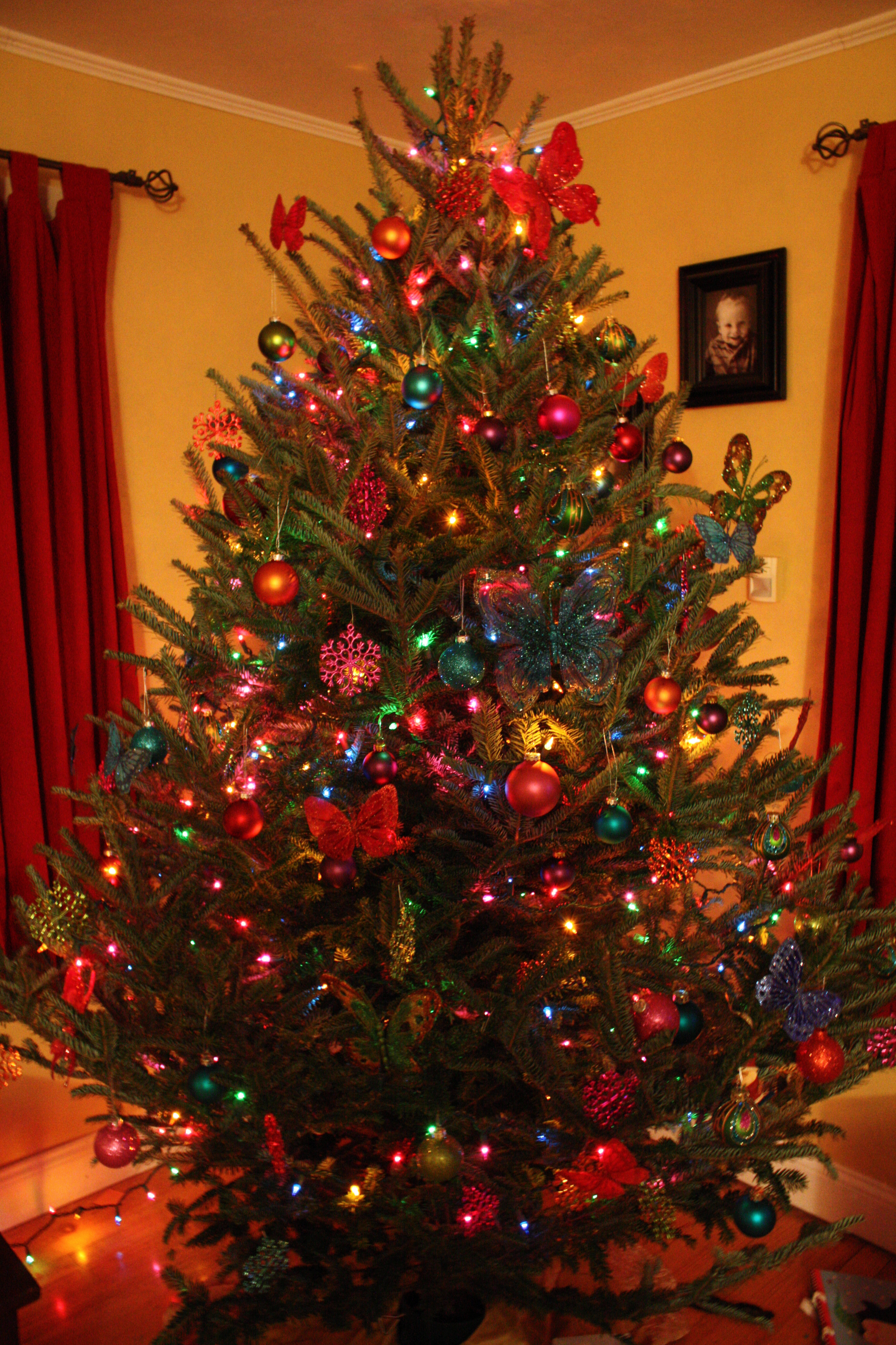10 Elegant Christmas Tree Decorating Ideas With Multi Colored Lights multi colored christmas tree decorating ideas igrenove 2021