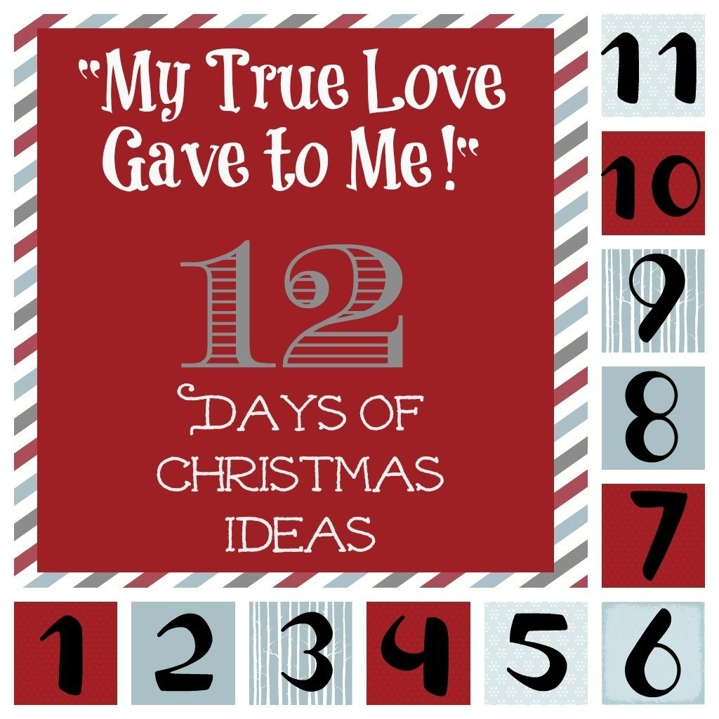 "my true love gave to me"" 12 days of christmas ideas 