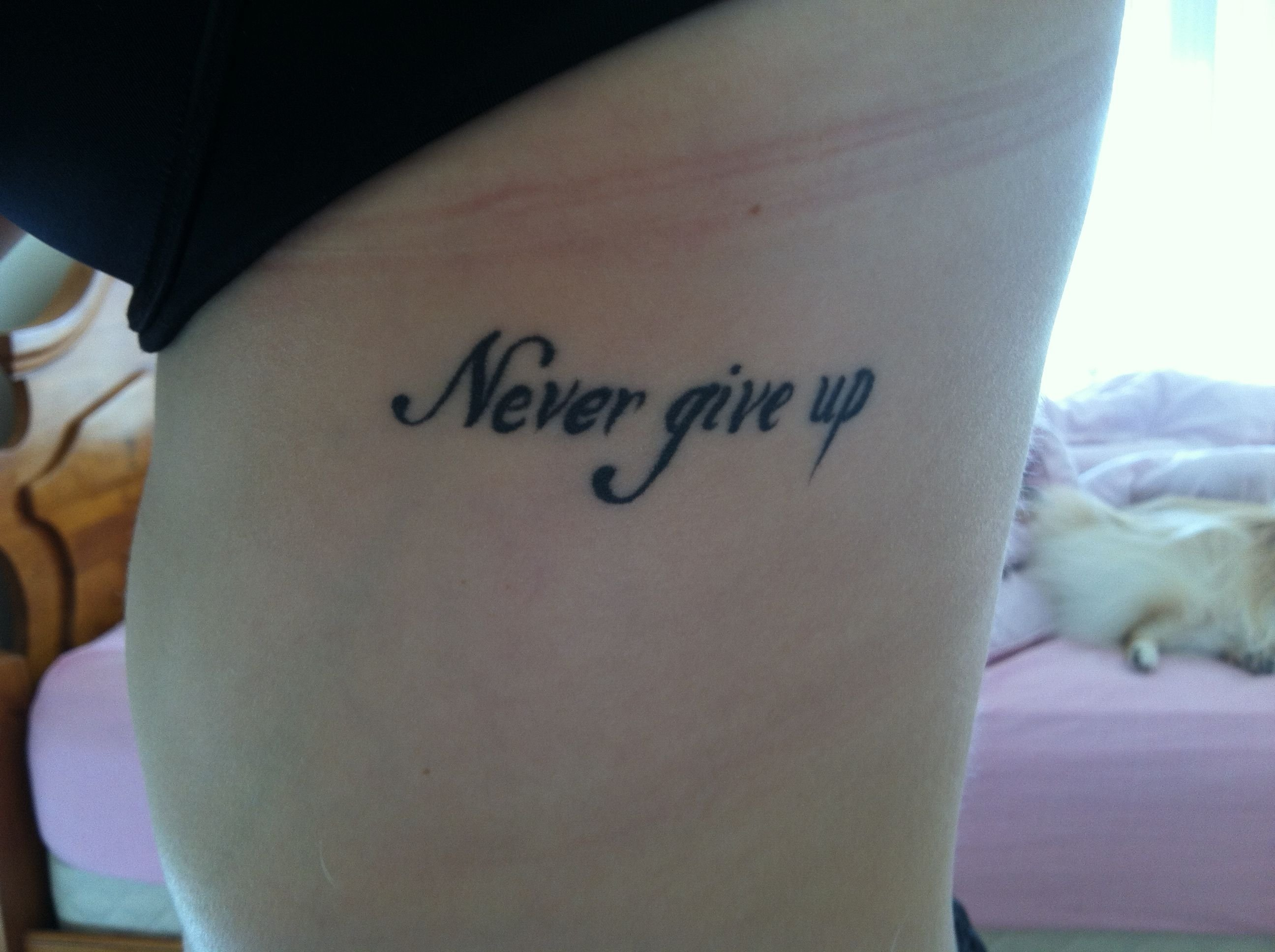 10 Elegant Never Give Up Tattoo Ideas never give up rib tattoo tattoos pinterest tattoo 2020