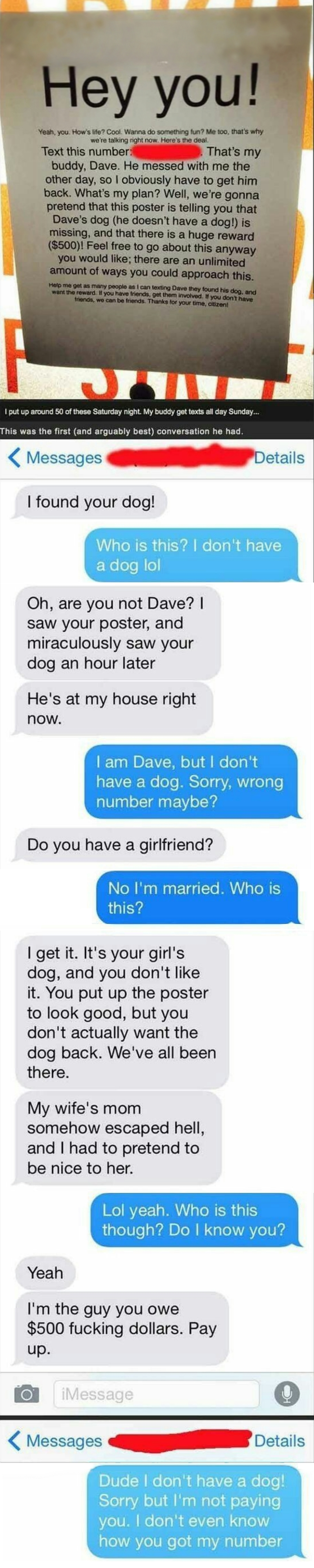 next time you need a good revenge prank idea, try this 'lost dog