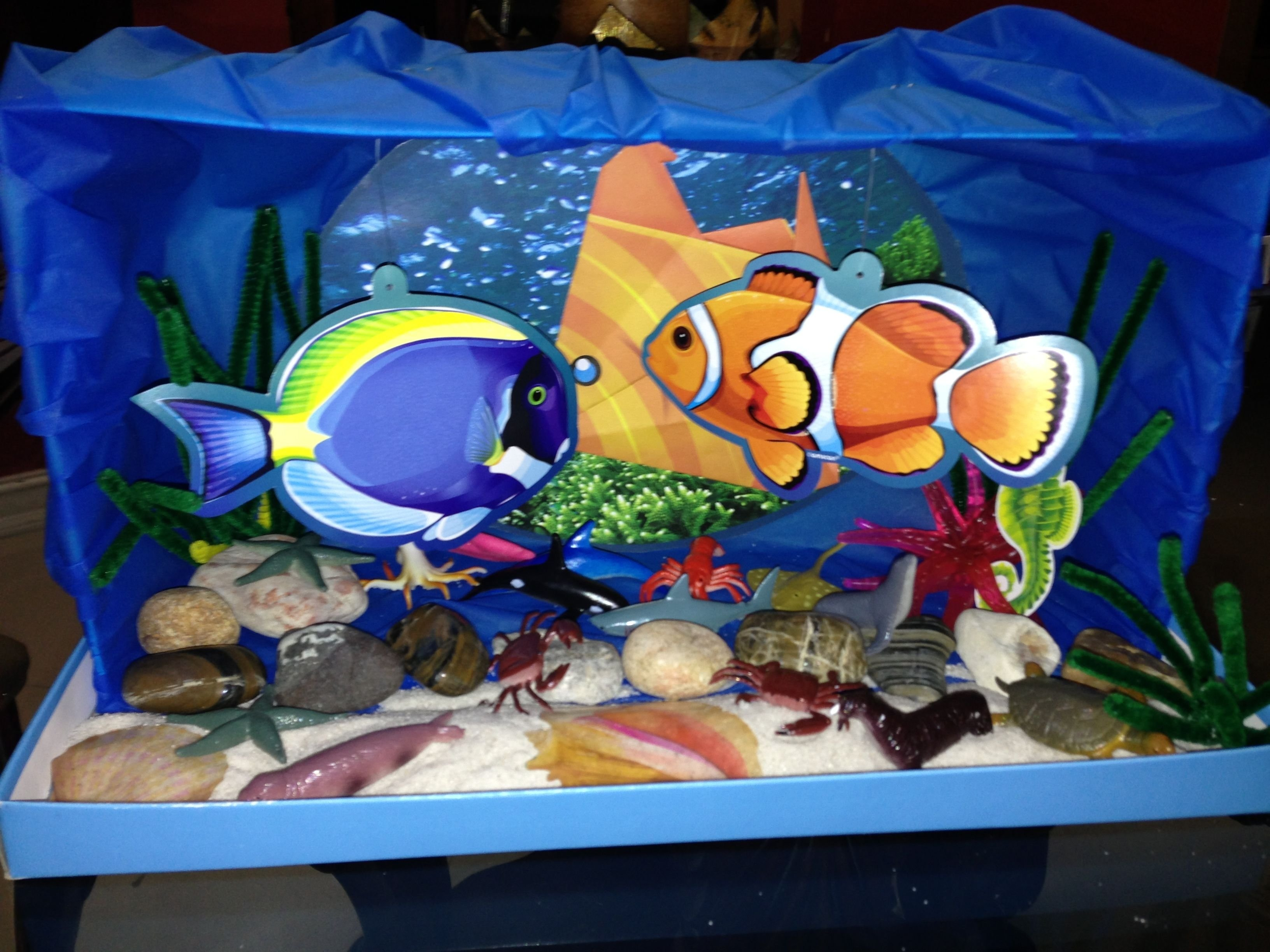 10 Stunning Ocean Diorama Ideas For Kids ocean diorama 1st grade science project pinteres 2020