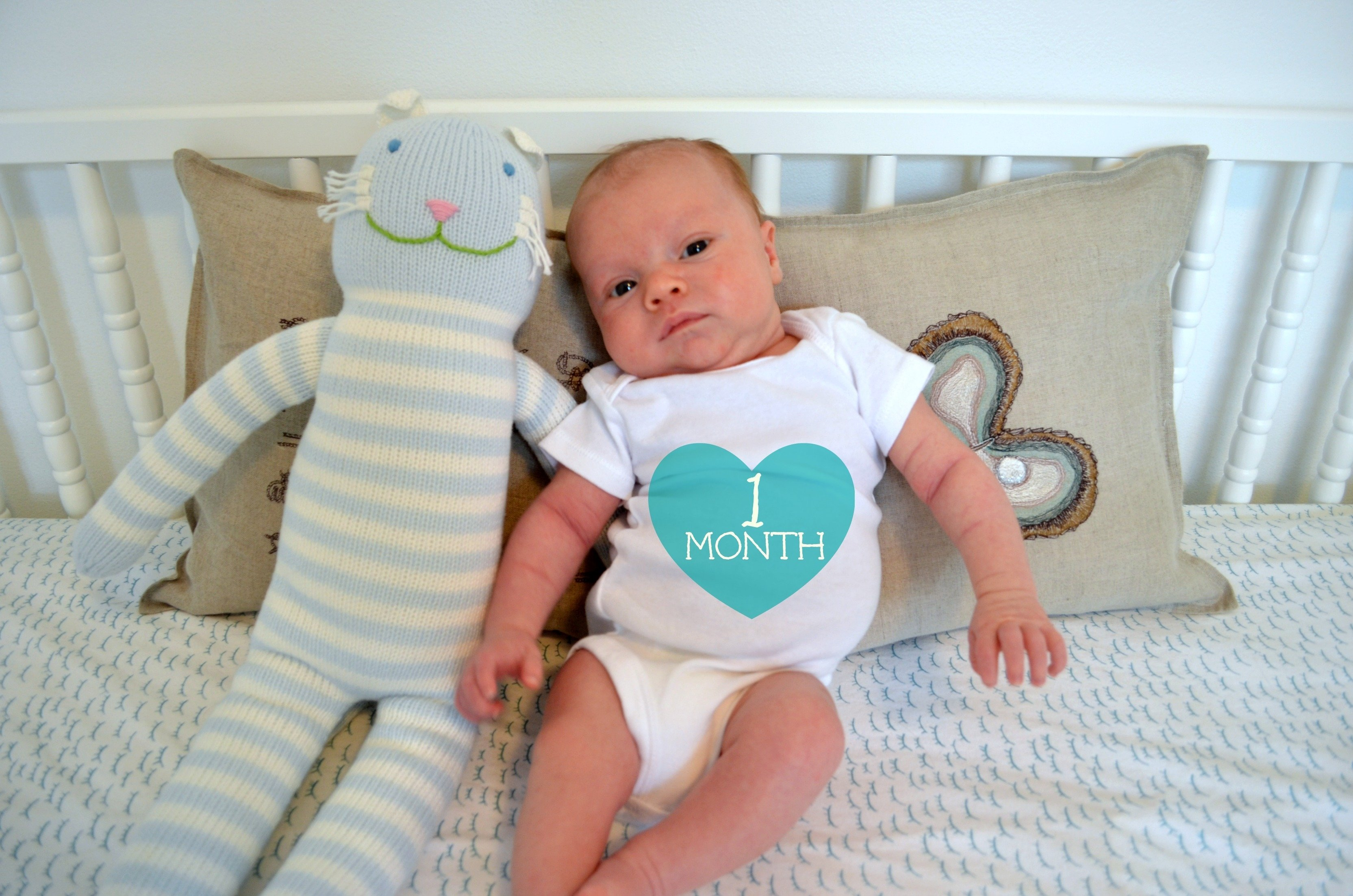 10 Unique 1 Month Baby Picture Ideas one month mother update blackbird ideas 1 2020