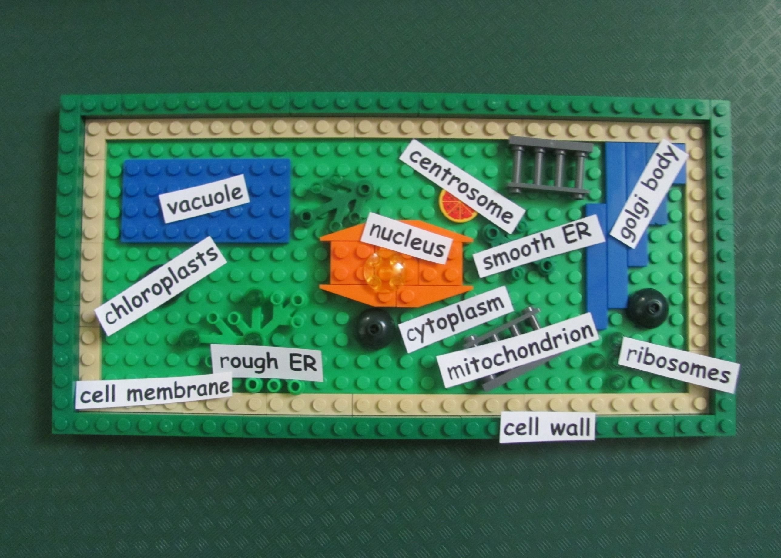 10 Ideal 3D Plant Cell Project Ideas online community for learning skills and being awesome school 2020