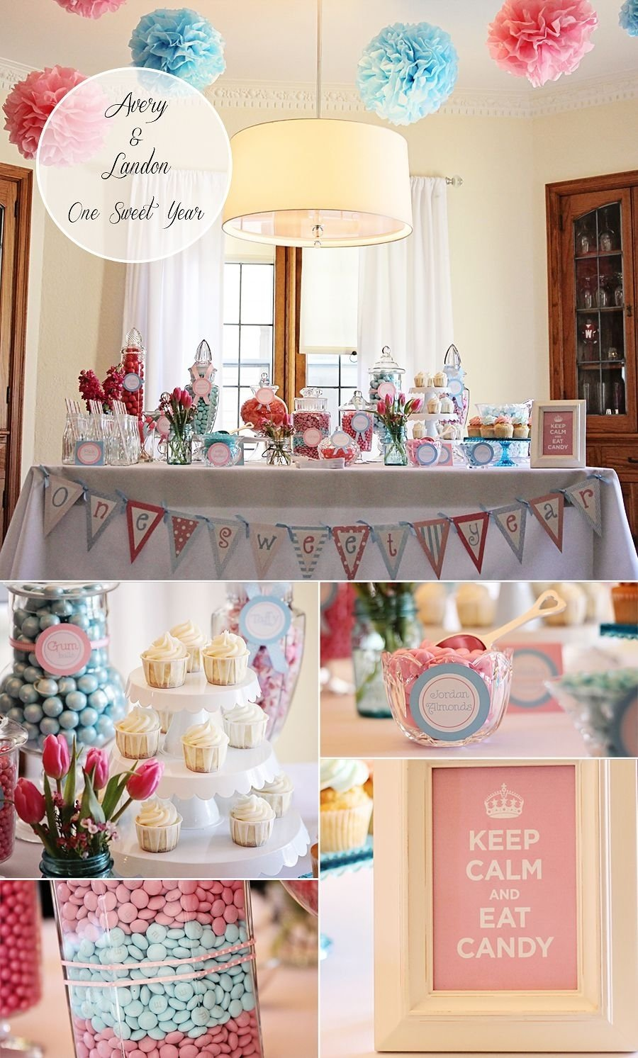 10 Lovable Twins First Birthday Party Ideas our blue and pink 1st birthday party for our boy girl twins love