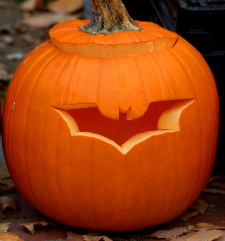 10 Amazing Awesome Jack O Lantern Ideas owl jack o lantern patterns awesome pumpkin for carving ideas 2020