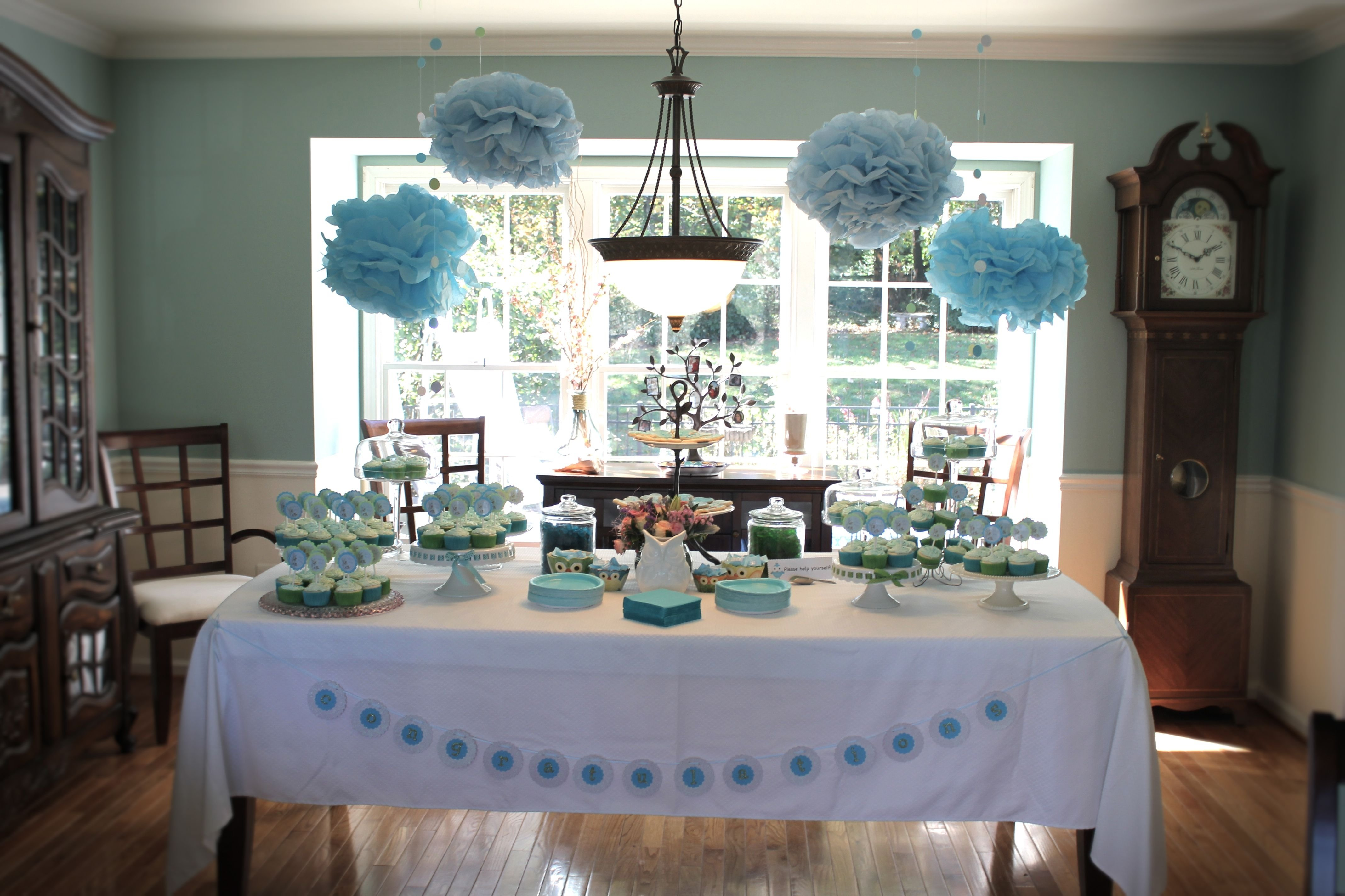 10 Perfect Baby Boy Shower Centerpiece Ideas owl themed baby shower ideas photos and homemade decorations 1