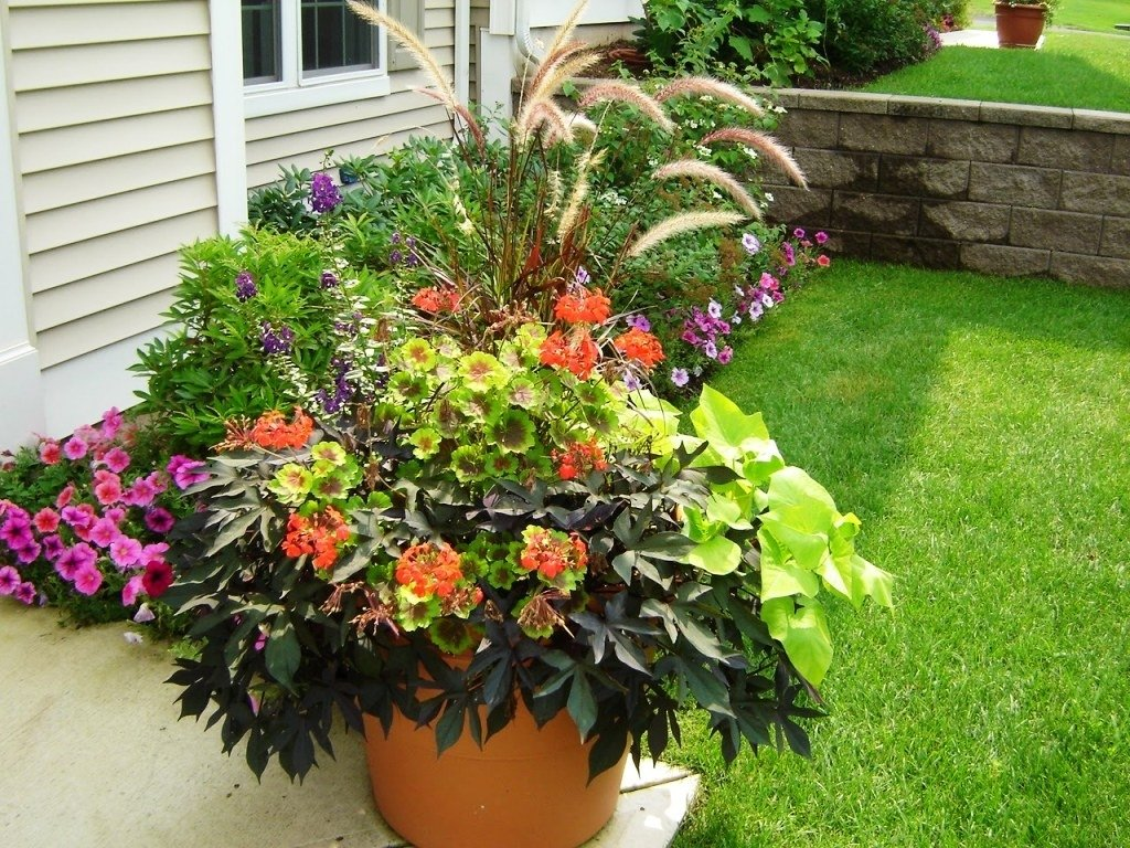 10 Nice Flower Pot Ideas For Patio patio pots ideas 4 plant pot for the download solidaria garden 2020