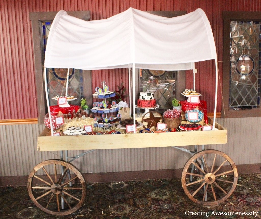 10 Attractive Western Party Ideas For Adults perfect western me party western me party diddams party toy store to 2020