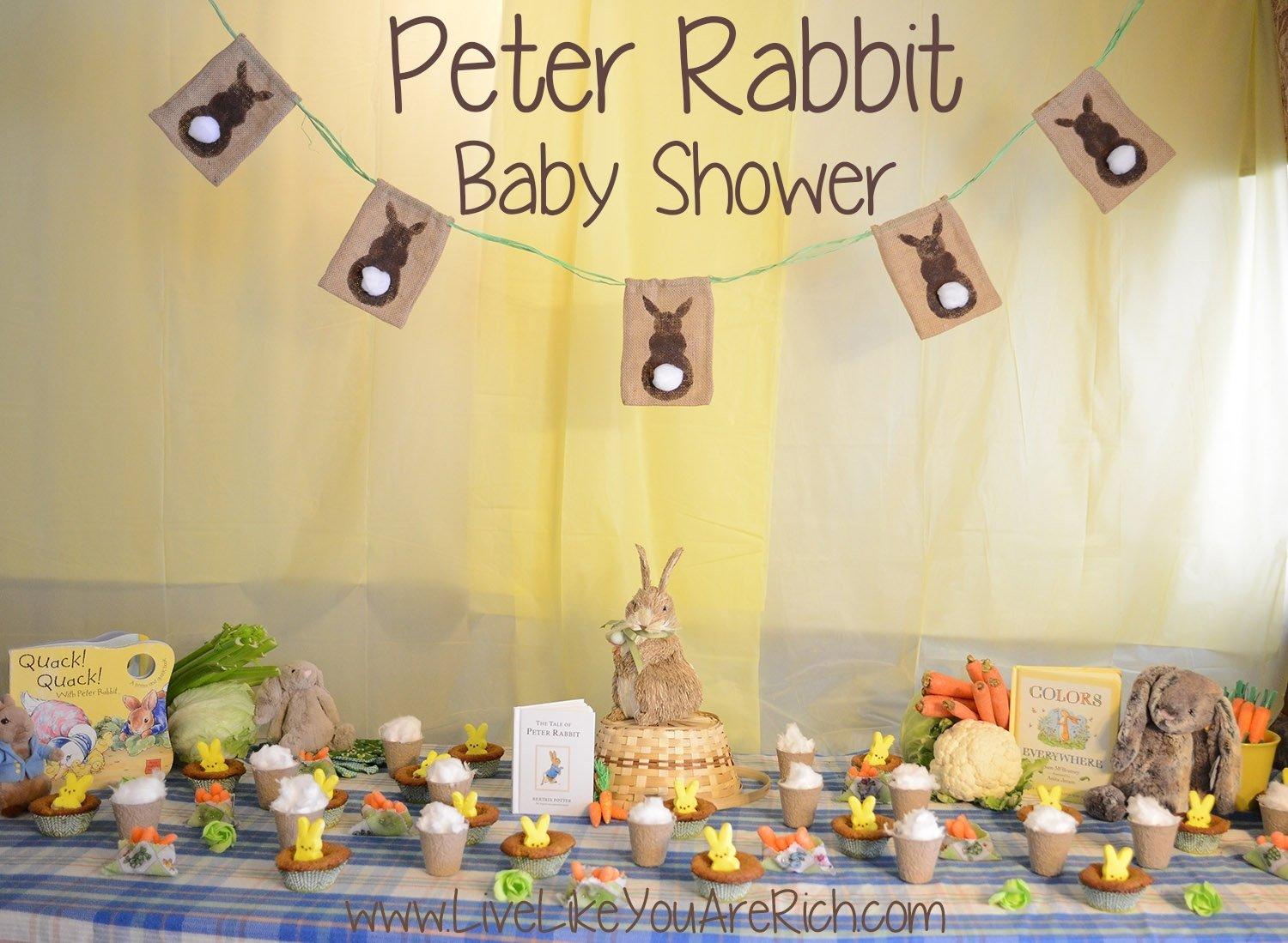10 Perfect Peter Rabbit Baby Shower Ideas peter rabbit baby shower ideas omega center ideas for baby 2020