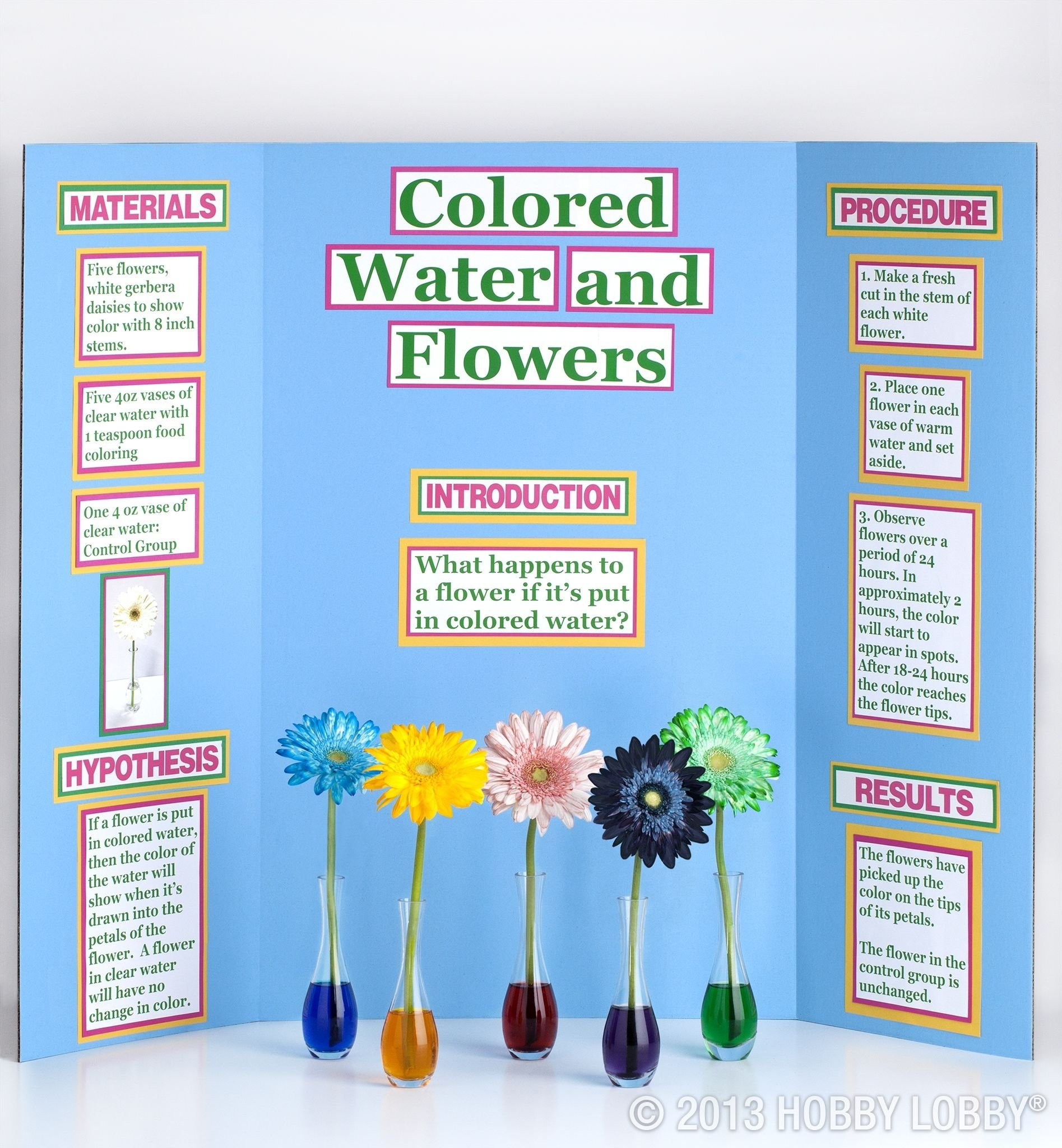 10 Attractive Science Fair Project Ideas With Food pick up a science experiment kit for your child then display their