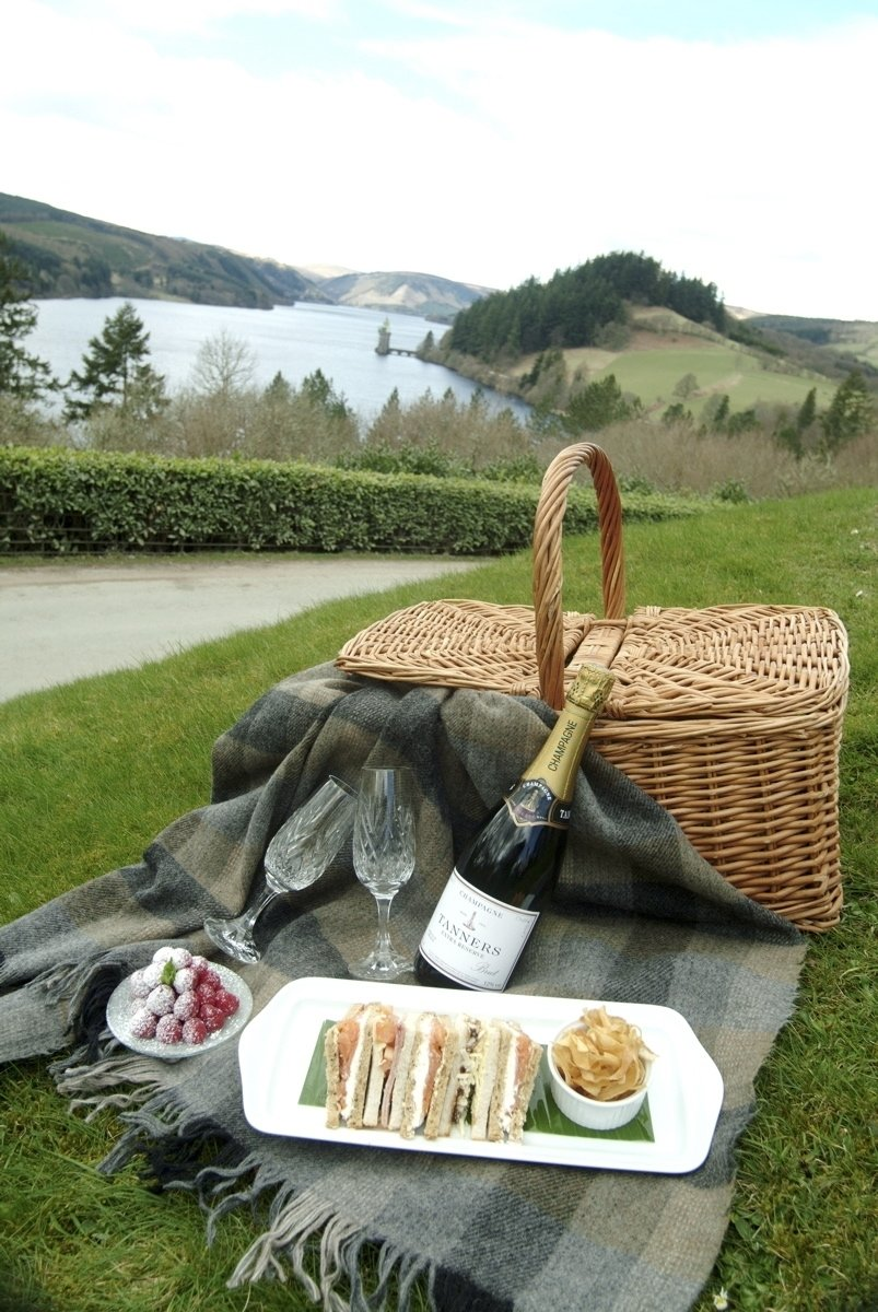 10 Spectacular Romantic Picnic Ideas For Her picnic 3 champagne pinterest picnics hamper and champagne