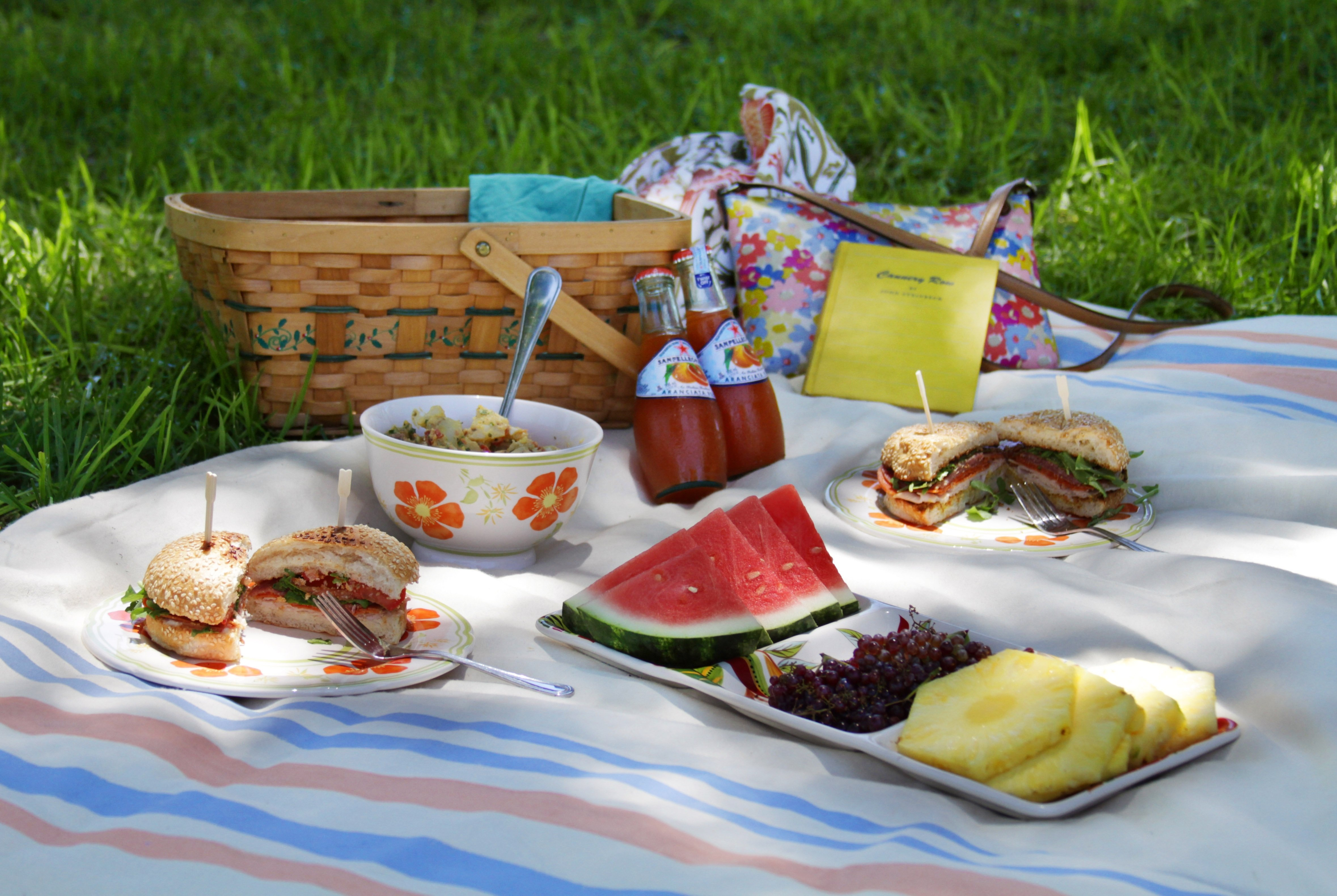 10 Trendy Picnic In The Park Ideas picnic ideas the sage owl 1