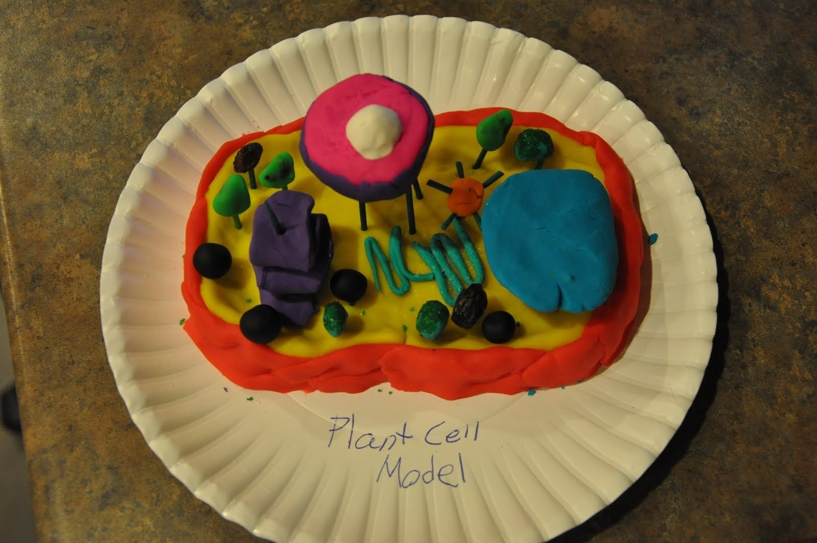 10 Pretty 3D Plant Cell Model Project Ideas pictures on a page life science project 2020