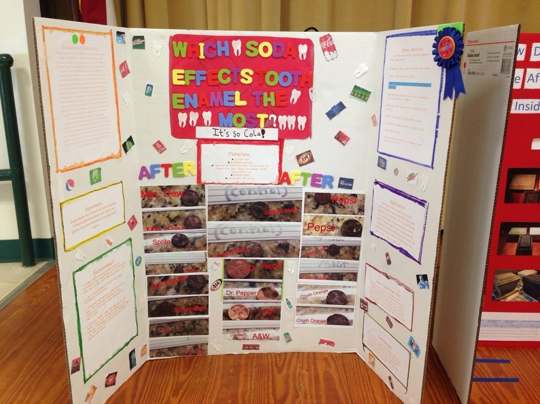 10 Cute Science Fair Project Ideas 5Th Grade pine trails winning science fair projects mrs schandels 5th 2 2020