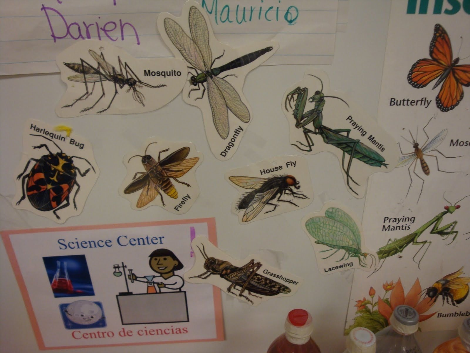 10 Gorgeous Science Center Ideas For Preschool preschool science center ideas make sure to have lots of fun 2020