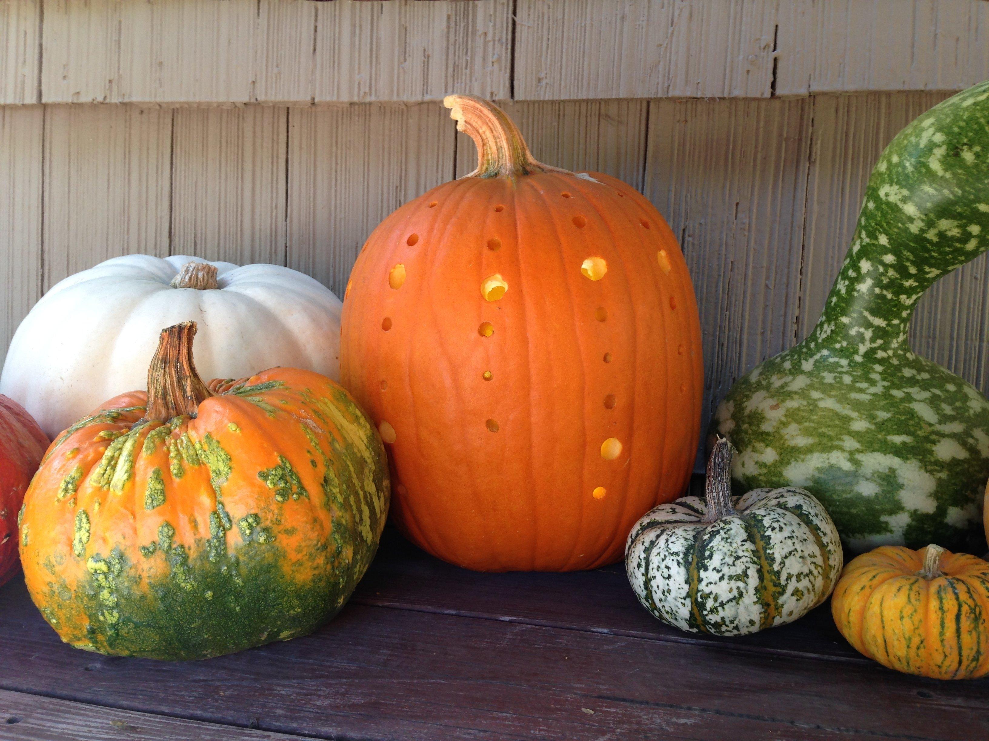 10 Stylish Creative Jack O Lantern Ideas pumpkins power drills 10 creative jack o lantern ideas 2020