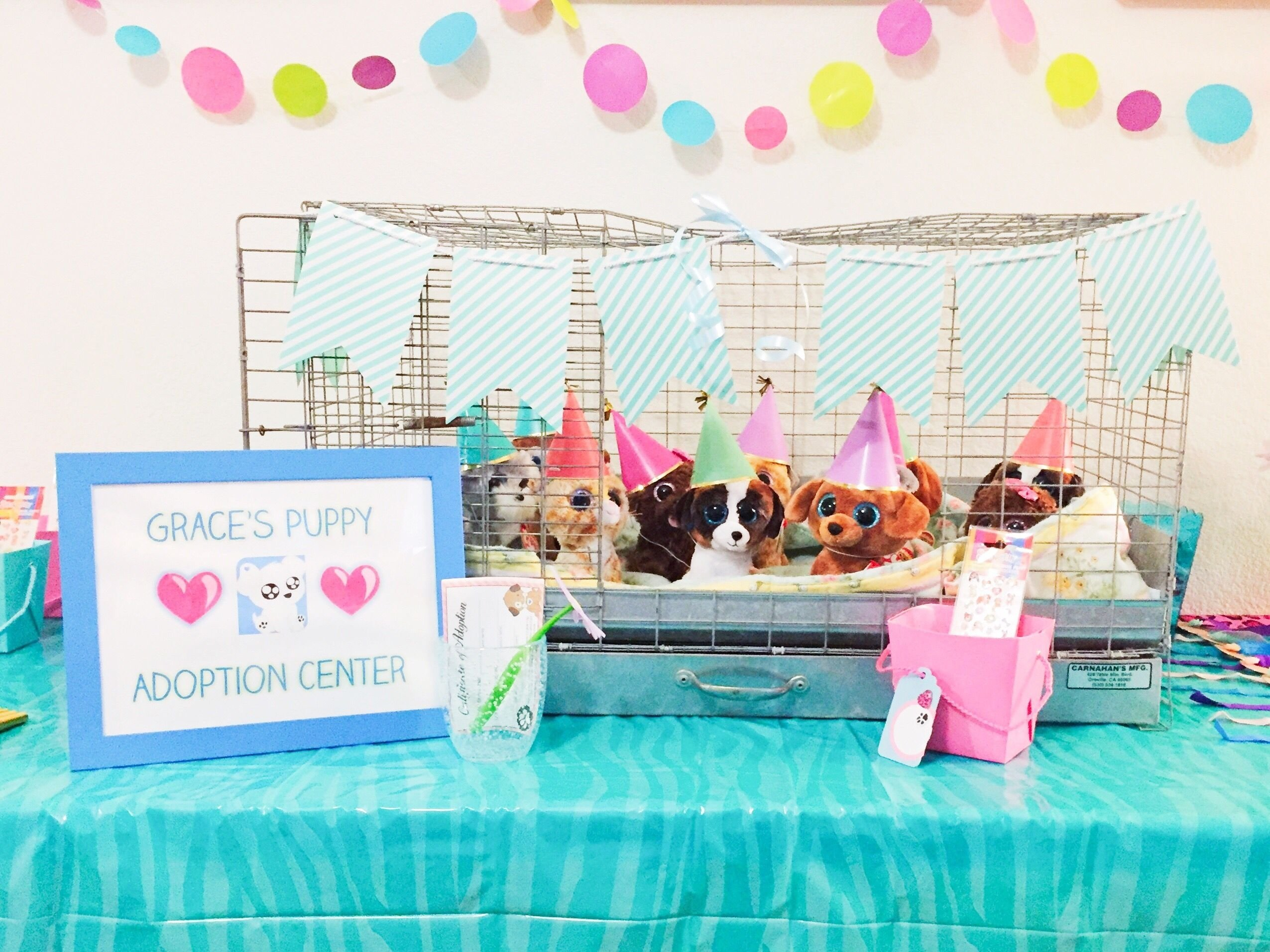 10 Nice 10Th Birthday Party Ideas For Girls puppy adoption birthday party girls birthday nine years old 2021