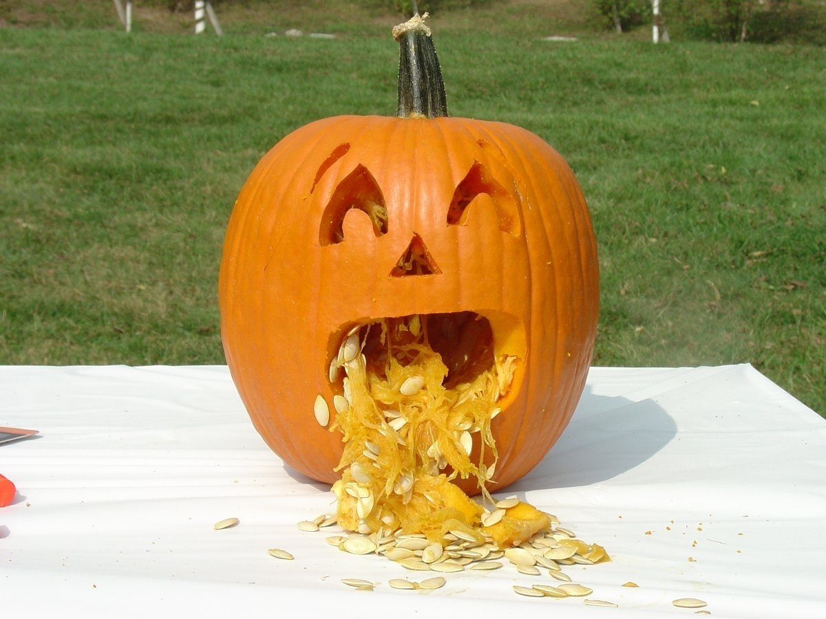 Pumpkins And Jack O'Lantern (8)