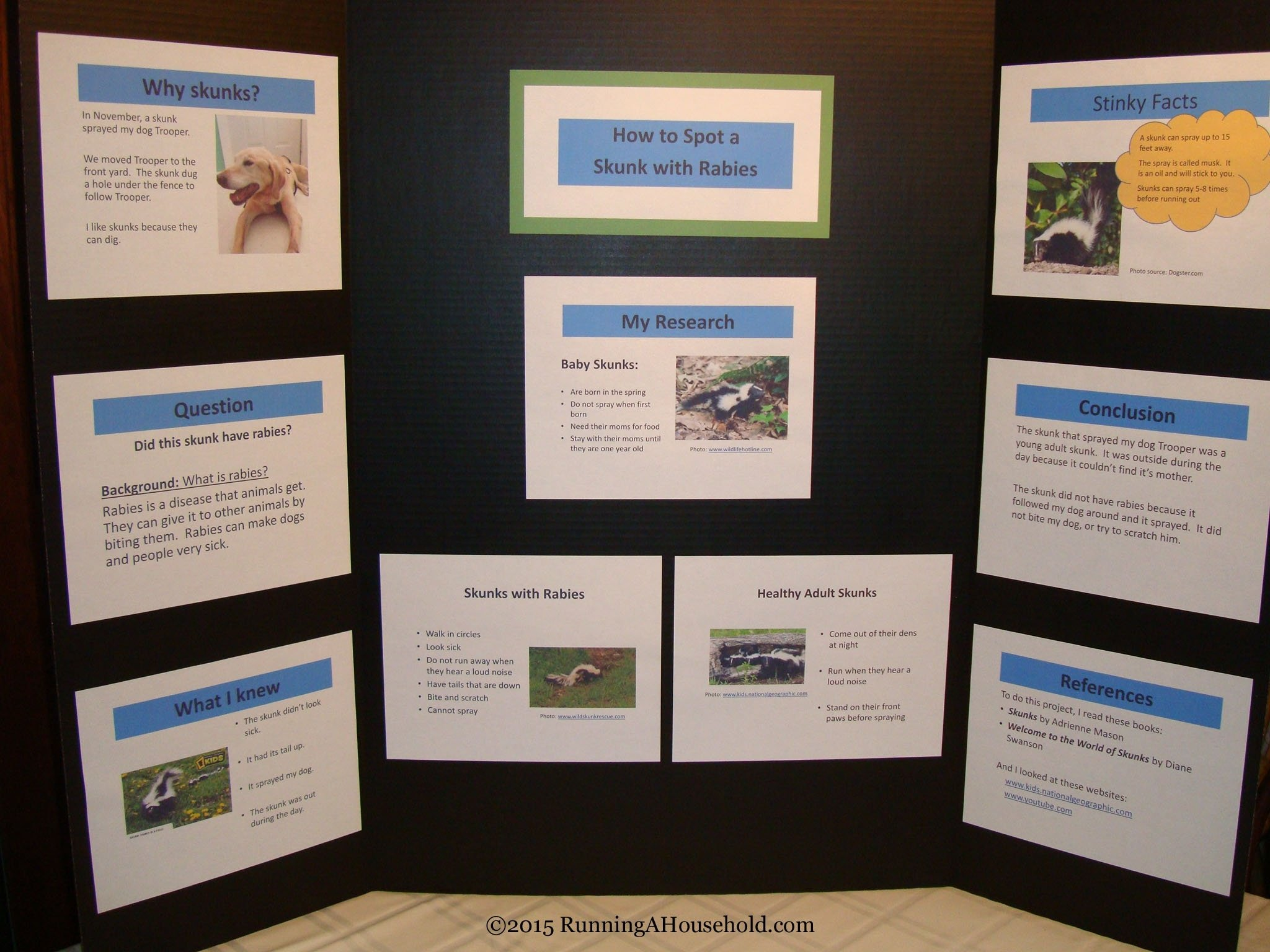 10 Famous Science Project Display Board Ideas rabies science project archives running a household