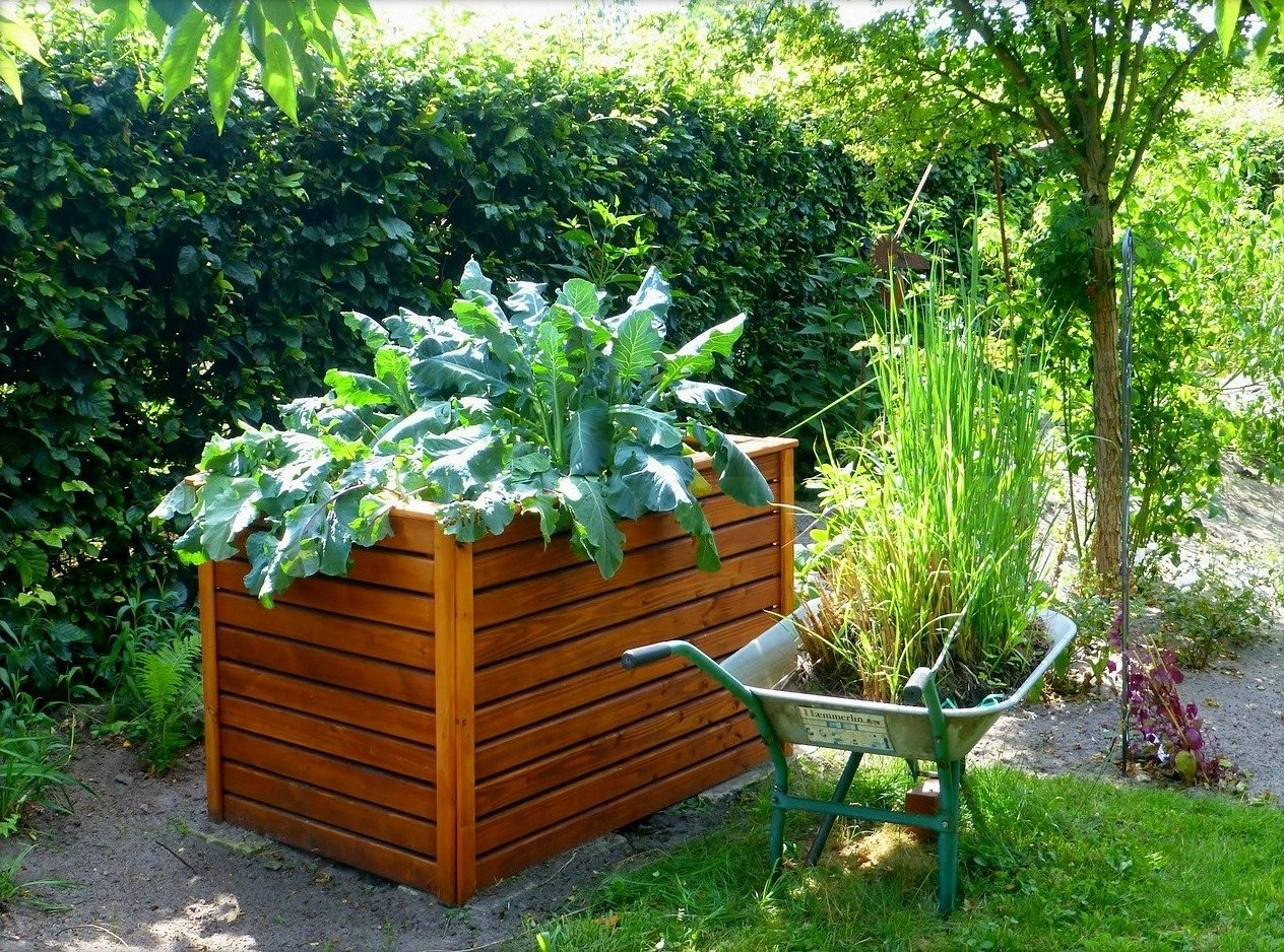 raised bed gardens and small plot gardening tips | the old farmer's