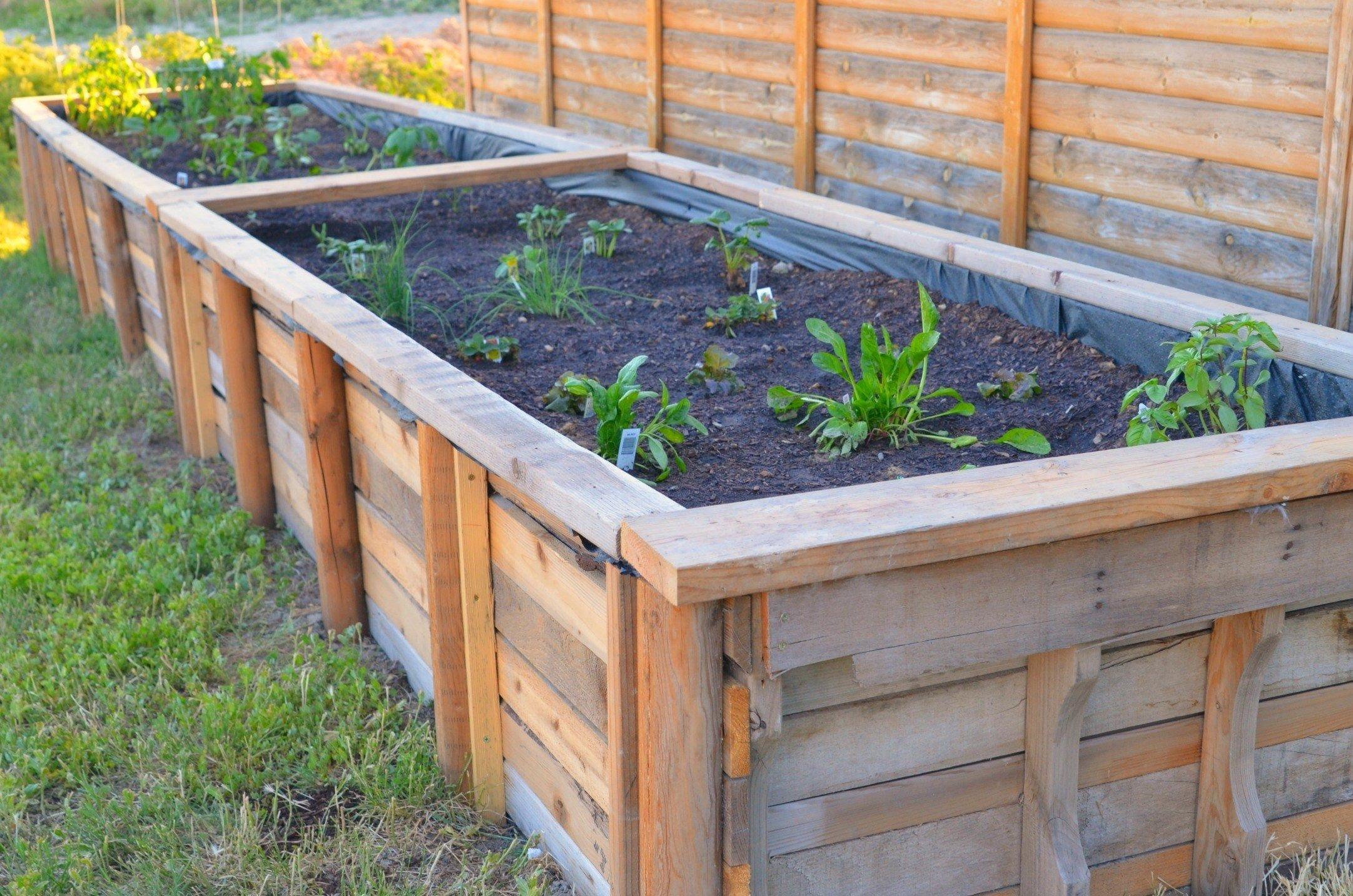 10 Unique Raised Bed Garden Design Ideas raised garden bed frame ideas incredible diy raised bed garden box 2021
