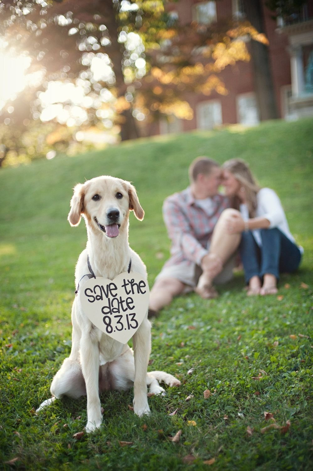 10 Nice Save The Date Ideas With Dogs save the date engagement heart sign with date photo prop engagement 2020
