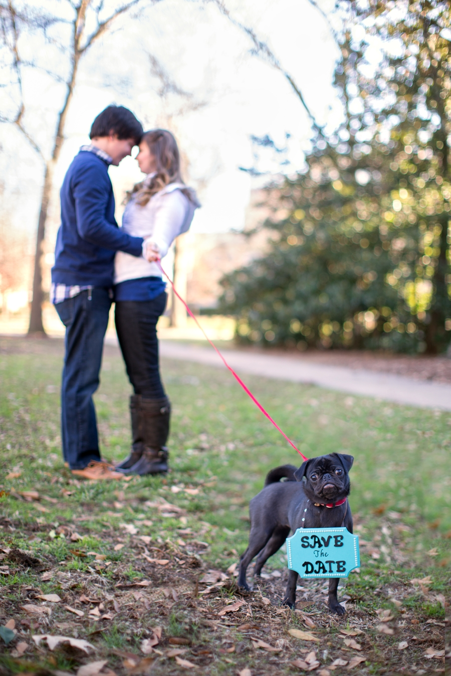 10 Nice Save The Date Ideas With Dogs save the date idea incorporating your pet dog pug engagement 2020