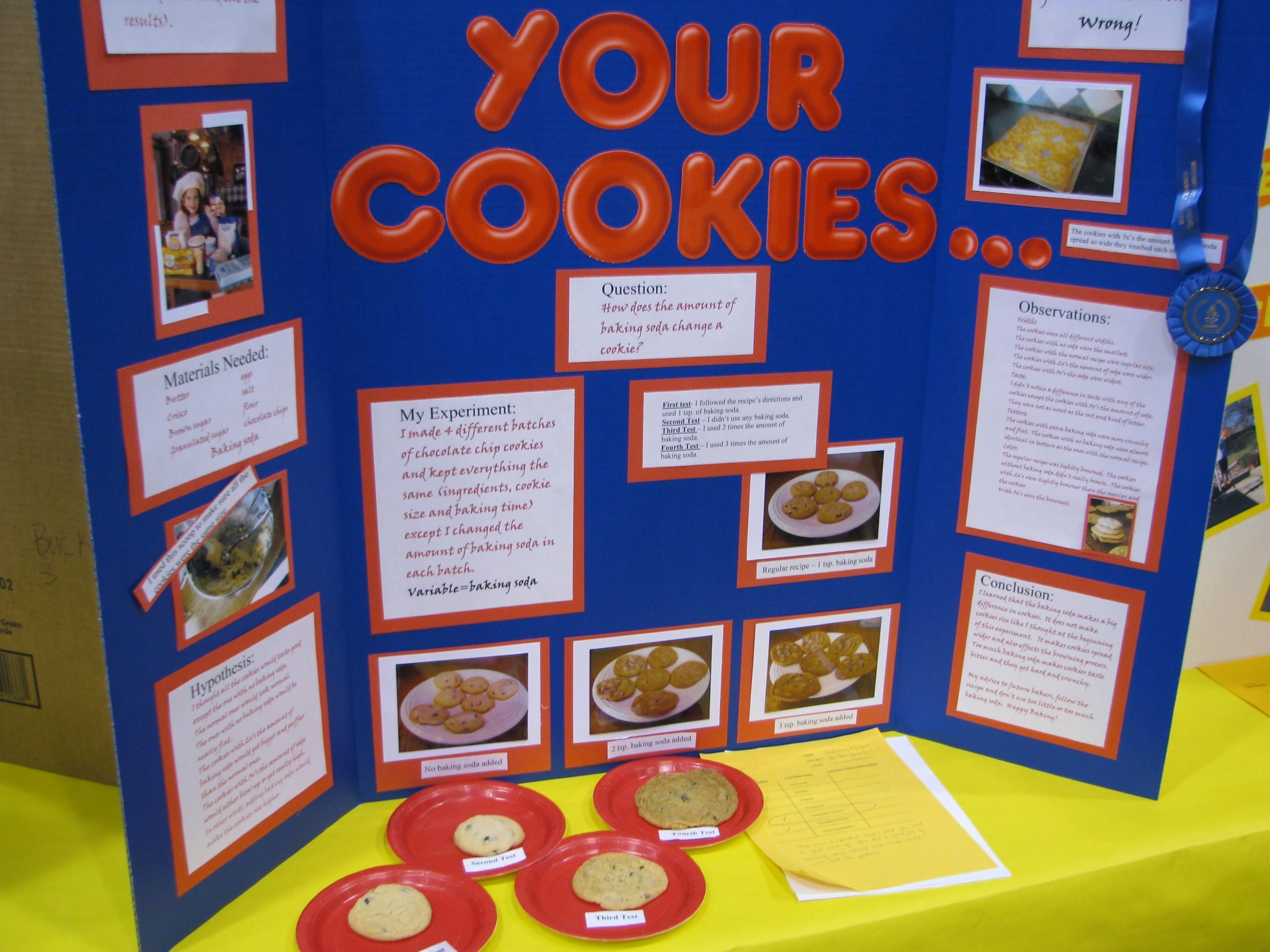 10 Stylish Science Projects Ideas For Kids science fair information science fair fair projects and science 3 2020