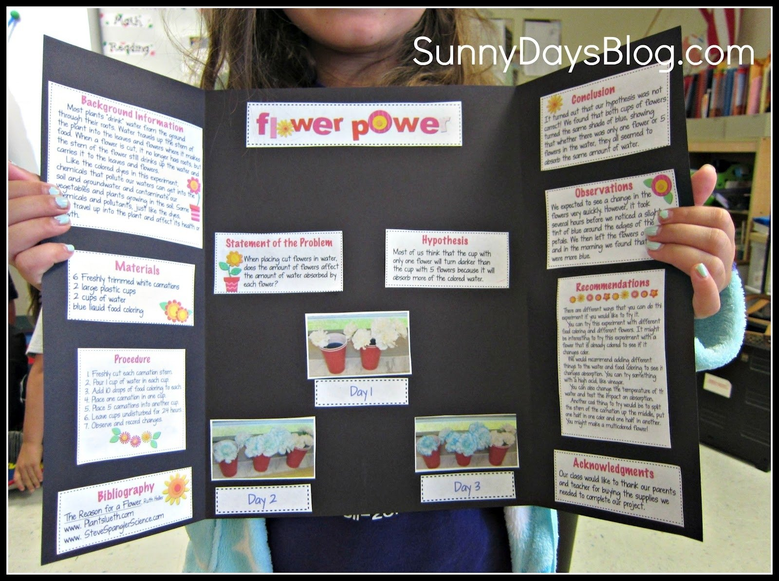 10 Perfect Last Minute Science Fair Project Ideas science fair made easy and free sunny days in second grade