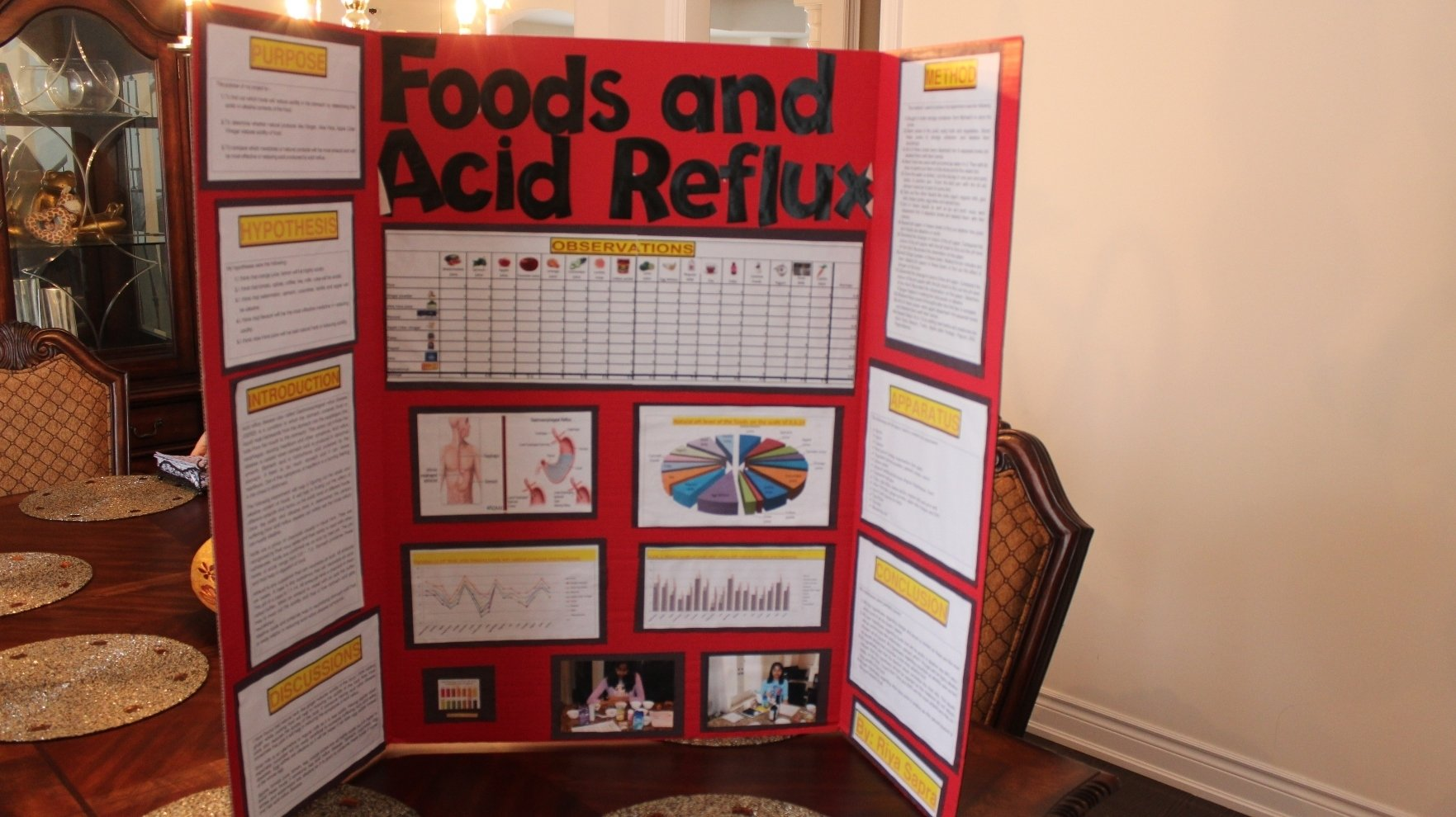 10 Famous Science Project Display Board Ideas science fair project display boards homework writing service