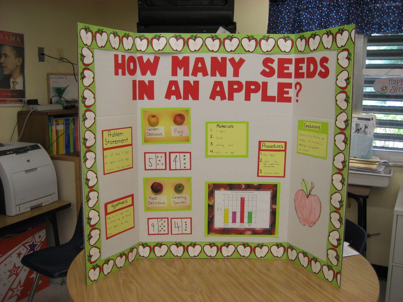 science fair project - kindergarten | school ideas | pinterest
