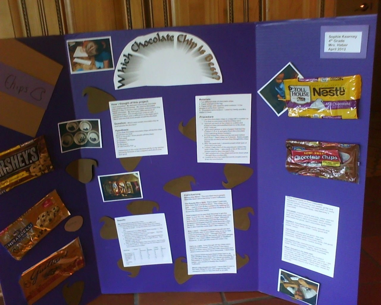 10 Gorgeous Best Science Fair Project Ideas science fair project which chocolate chip tastes the best fair