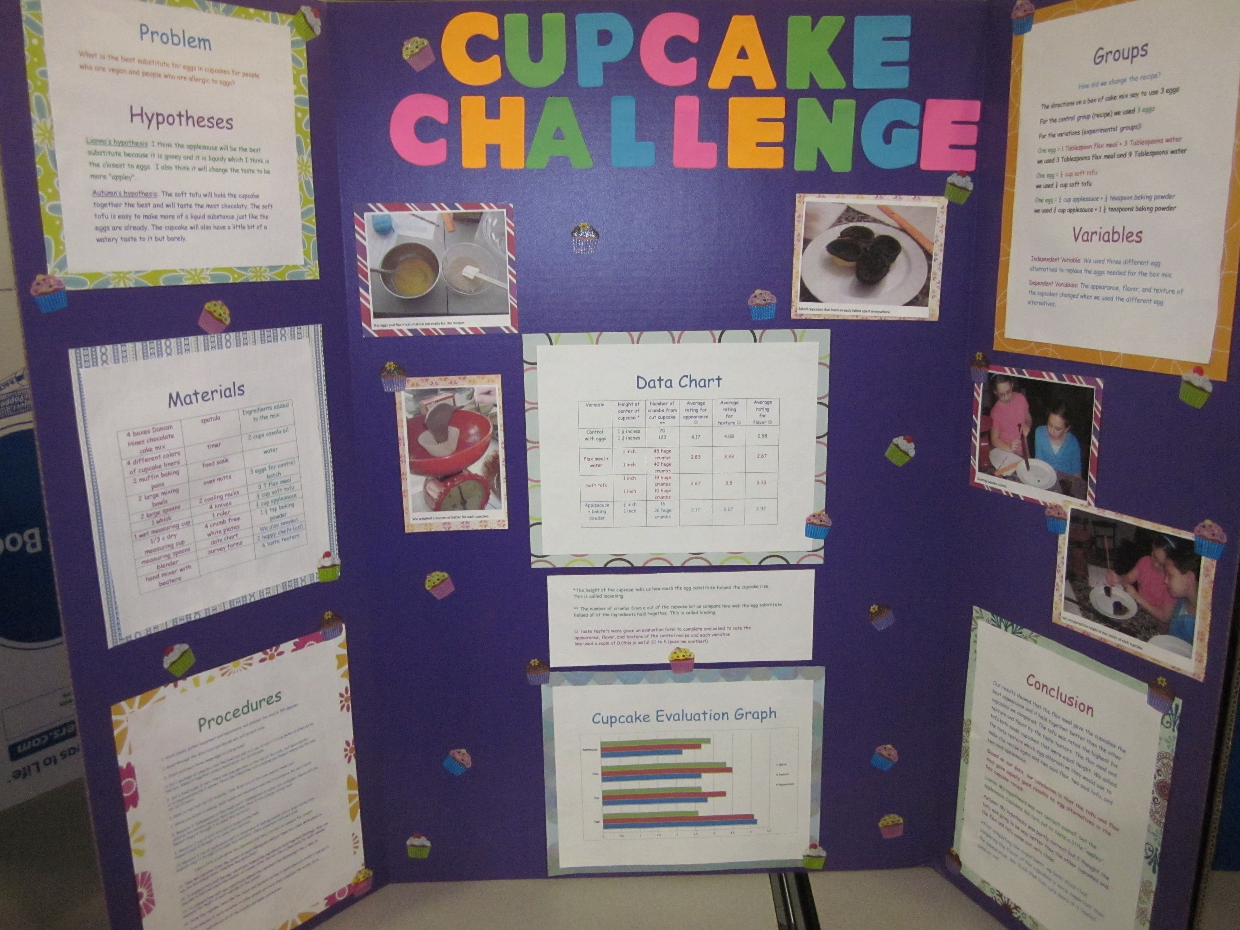 10 Gorgeous Best Science Fair Project Ideas science fair projects for 4th grade google search humor 2