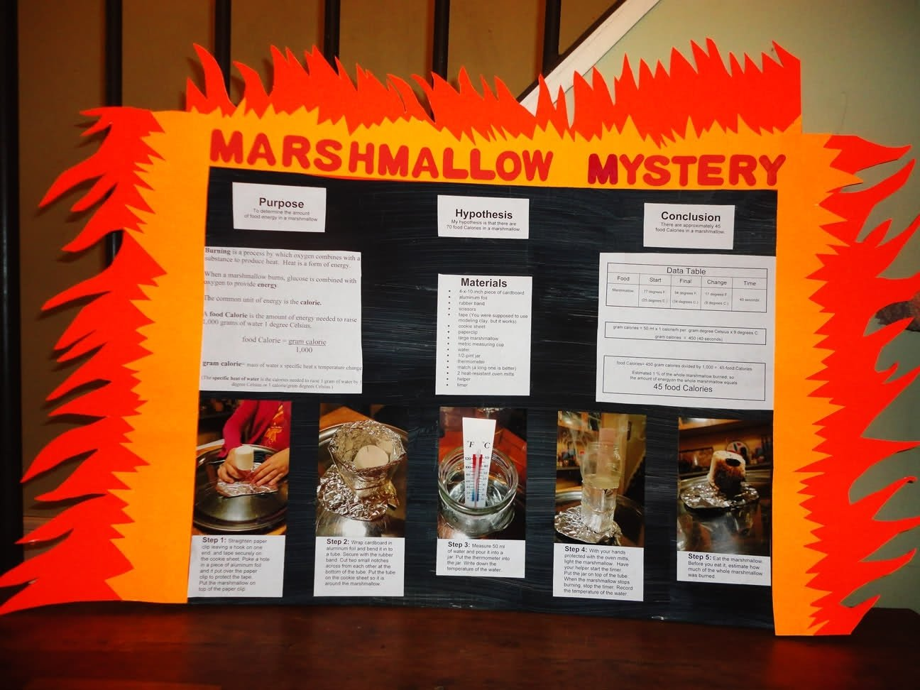 10 Fashionable Science Fair Ideas With Food science project 1 2020