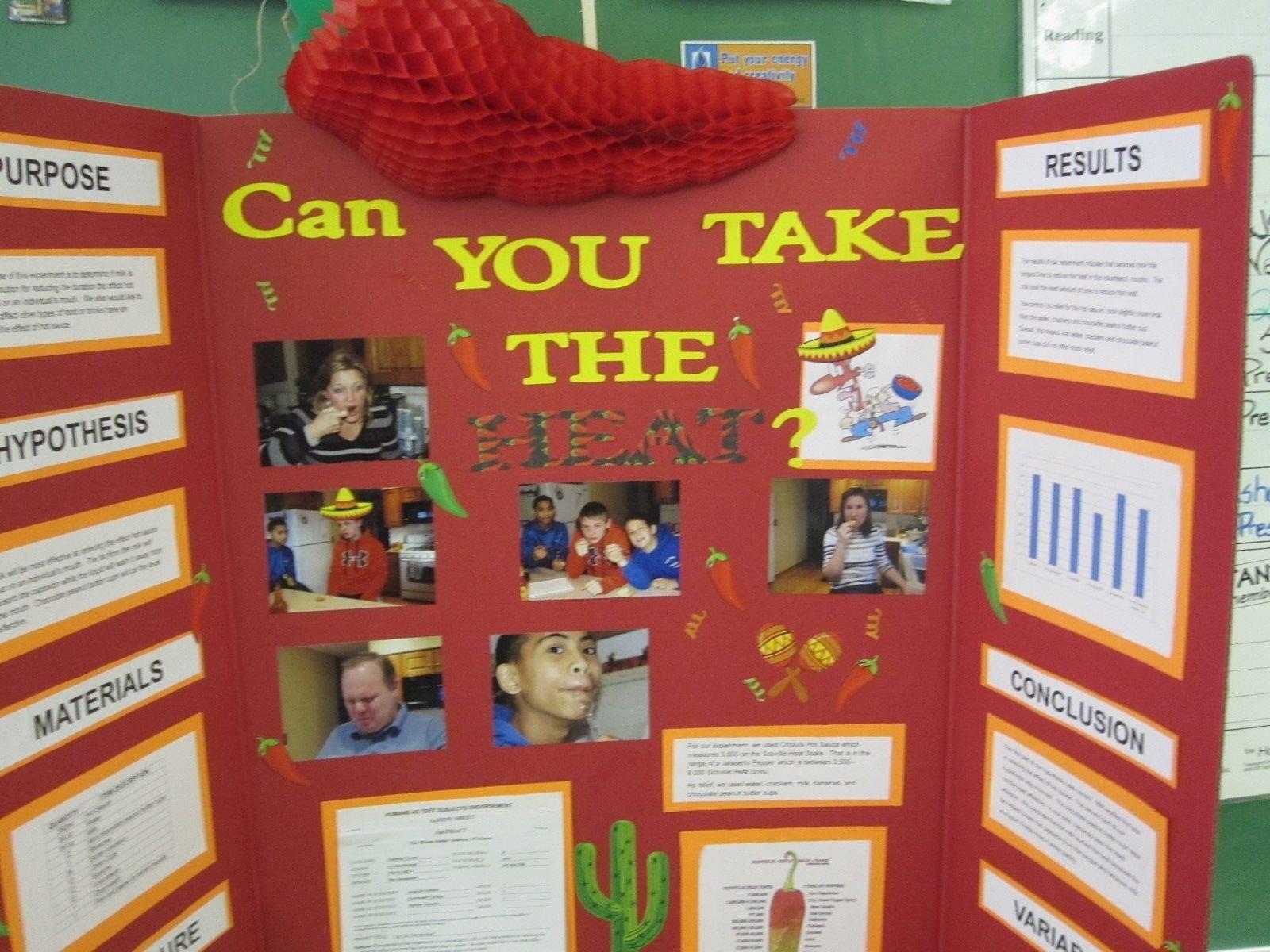 imágenes de science project for 2nd grade