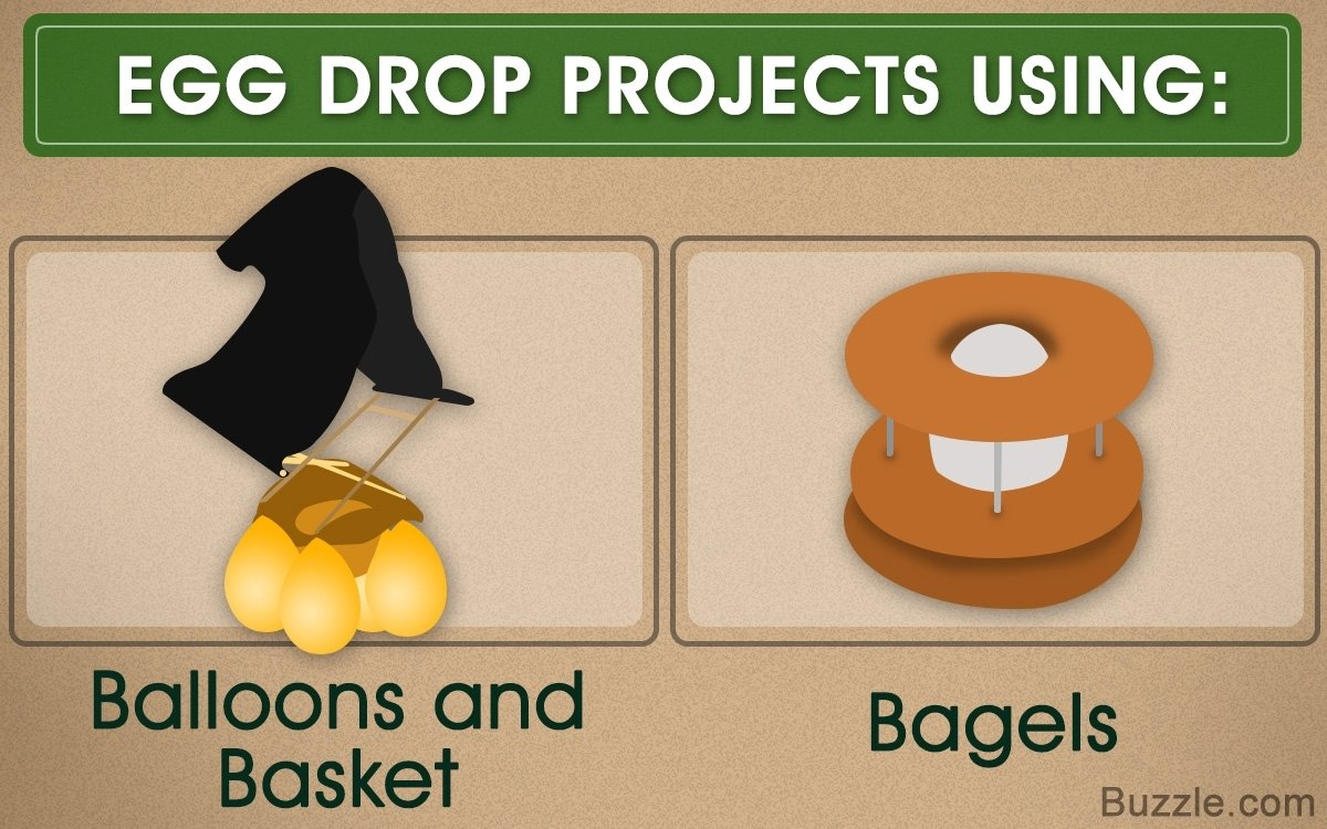 10 Perfect Easy Egg Drop Project Ideas simple and easy egg drop project ideas you should try next 1 2021