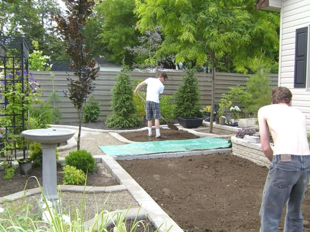 10 Most Recommended Backyard Landscaping Ideas For Privacy small backyard garden privacy landscaping ideas for backyards the 2020