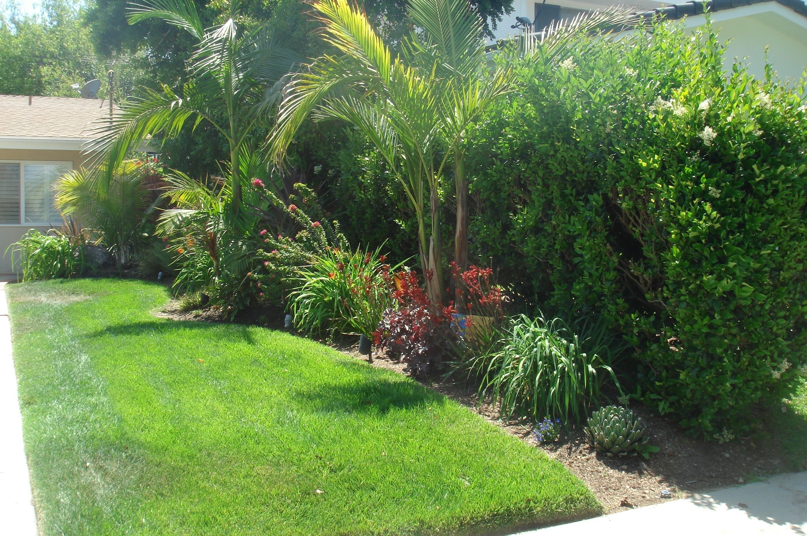 10 Attractive Tropical Landscaping Ideas For Front Yard small backyard tropical landscaping ideas how to design tropical 2020