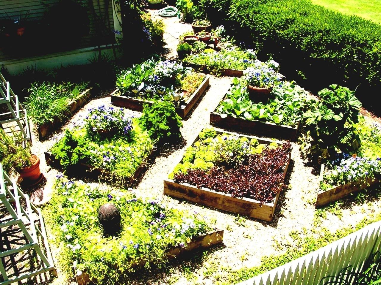 10 Pretty Vegetable Garden Ideas For Small Spaces small space vegetable garden ideas best design home garden design 2020